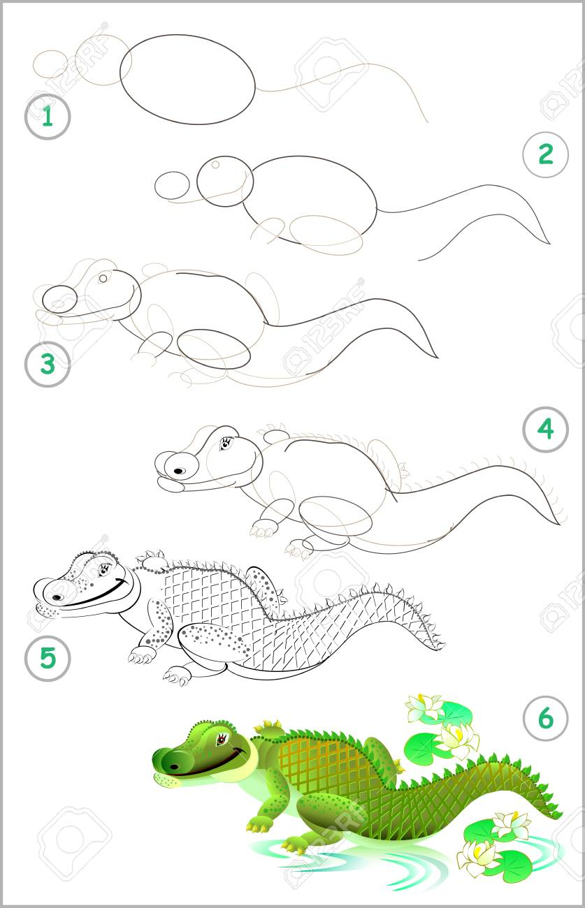 Page Shows How To Learn Step By Step To Draw A Cute Crocodile Royalty Free Cliparts Vectors And Stock Illustration Image 97418219