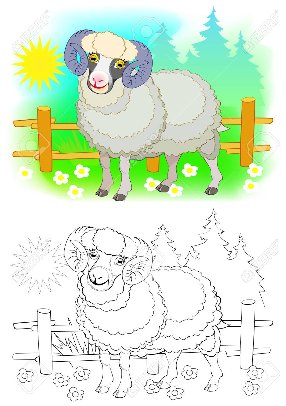Fantasy Illustration Of Cute Sheep Colorful And Black And White