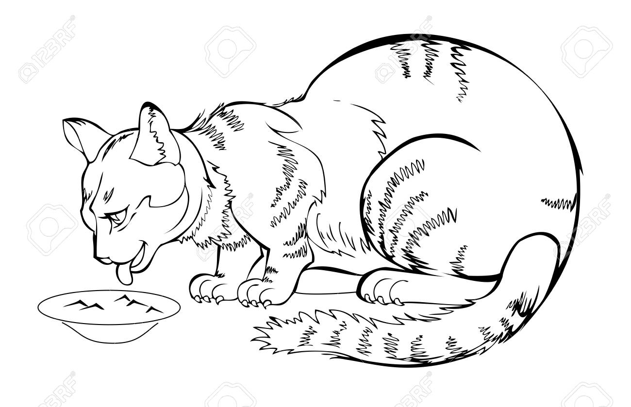 Sketch Of My Always Hungry Eating Cat Black And White Page For Royalty Free Cliparts Vectors And Stock Illustration Image 119010878