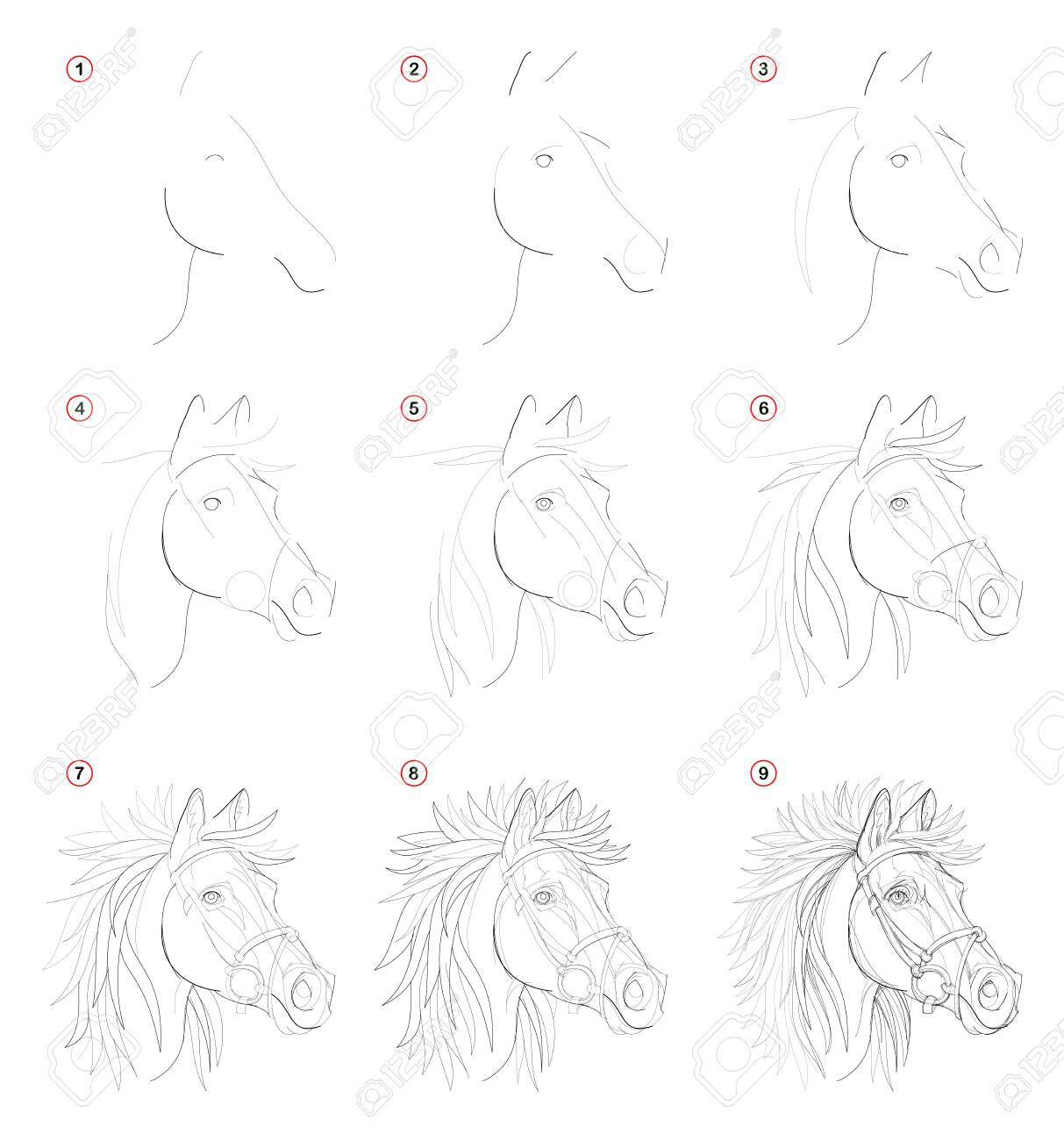 Creation Step By Step Pencil Drawing Page Shows How Learn To Royalty Free Cliparts Vectors And Stock Illustration Image 125286893