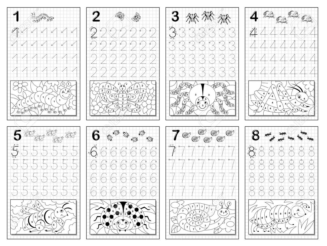 Set of black and white educational pages on square paper for kids. Trace numbers and color insects. Printable worksheet for children textbook. Coloring book. Developing writing skill. Back to school. - 170076804