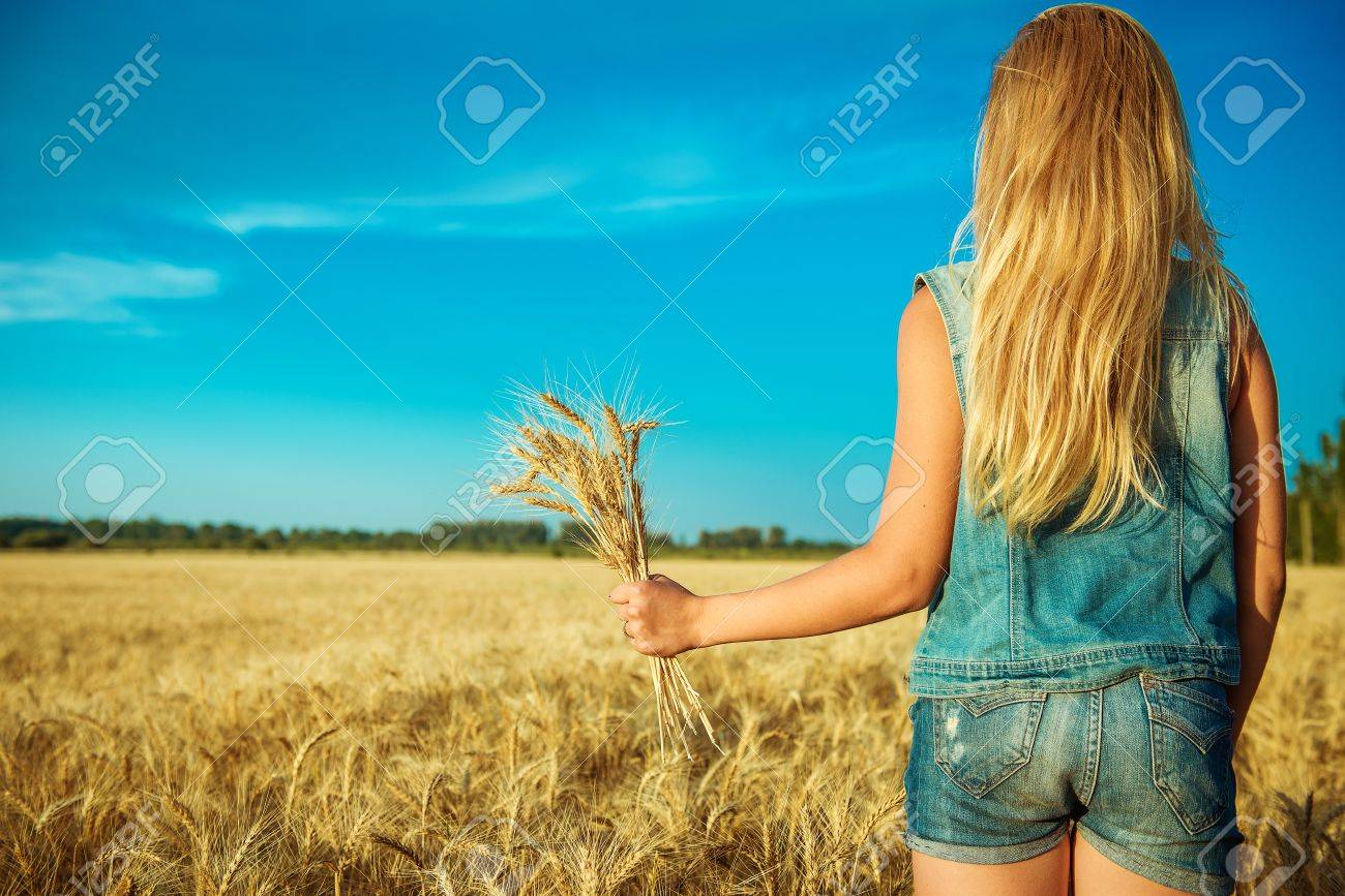 ears of wheat in women's hands on the background of field - 69762640