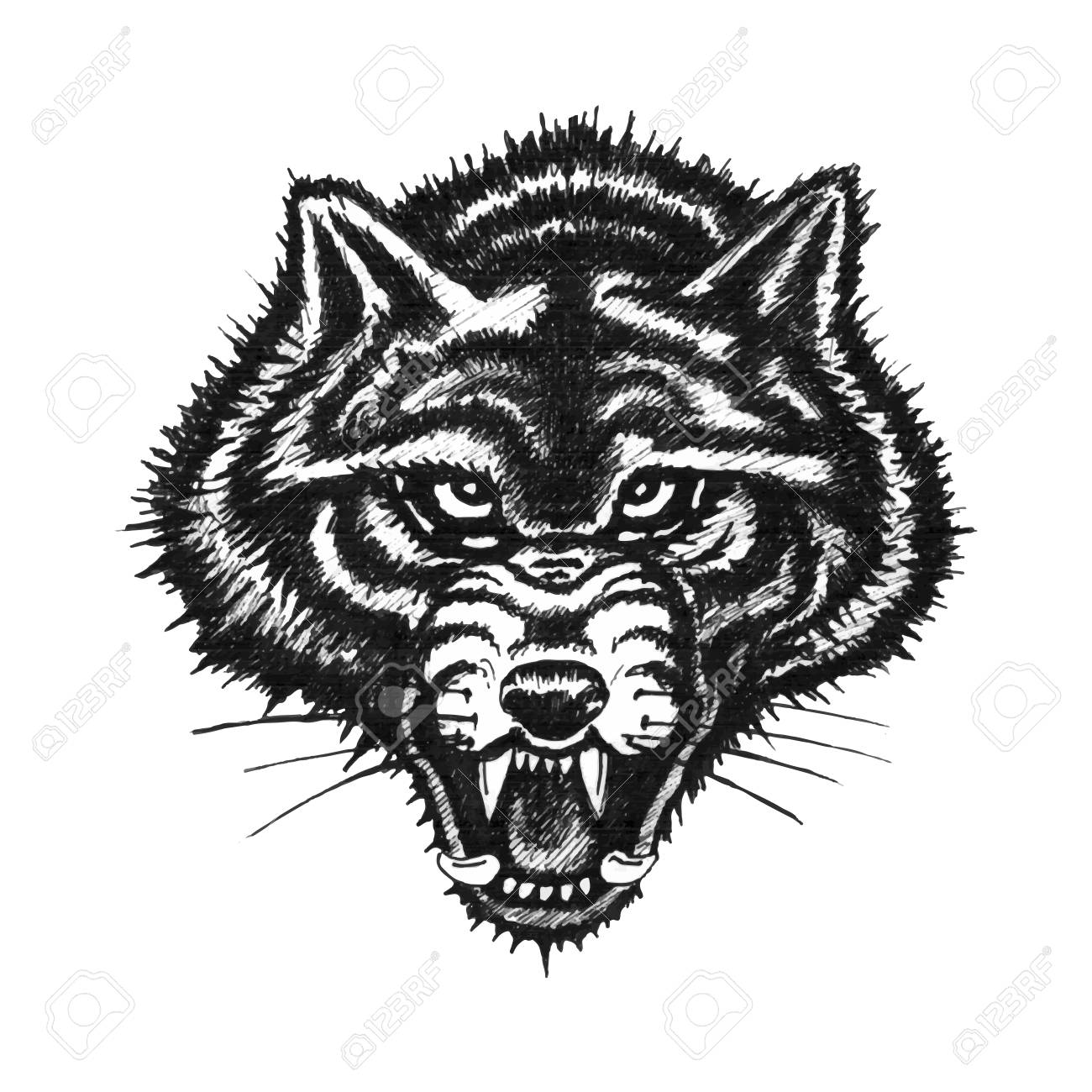 hand drawn wolf face on white background stock photo 82117540