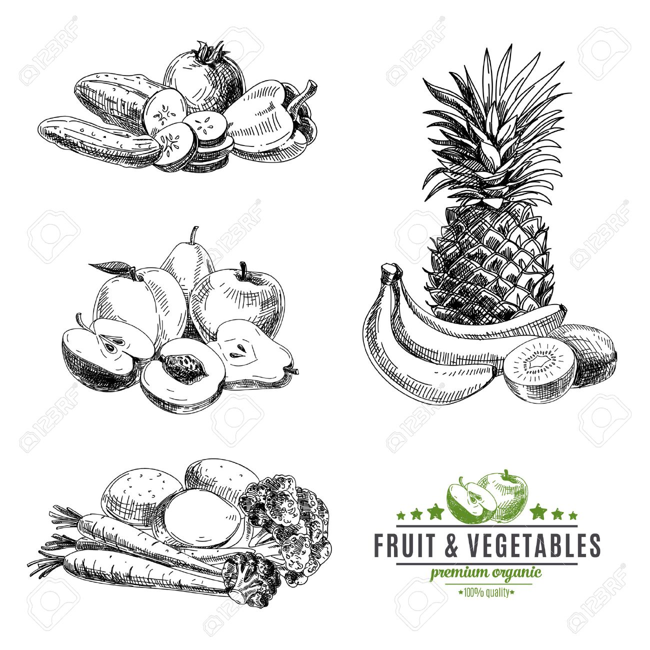 Vector set of fruit and vegetables. Healthy food. Vector illustration in sketch style. Hand drawn design elements. - 43333324