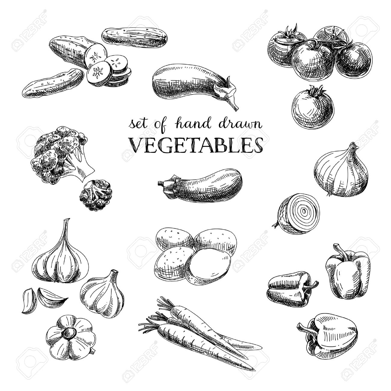 Vector hand drawn sketch vegetable set. Eco foods.Vector illustration. - 43333517