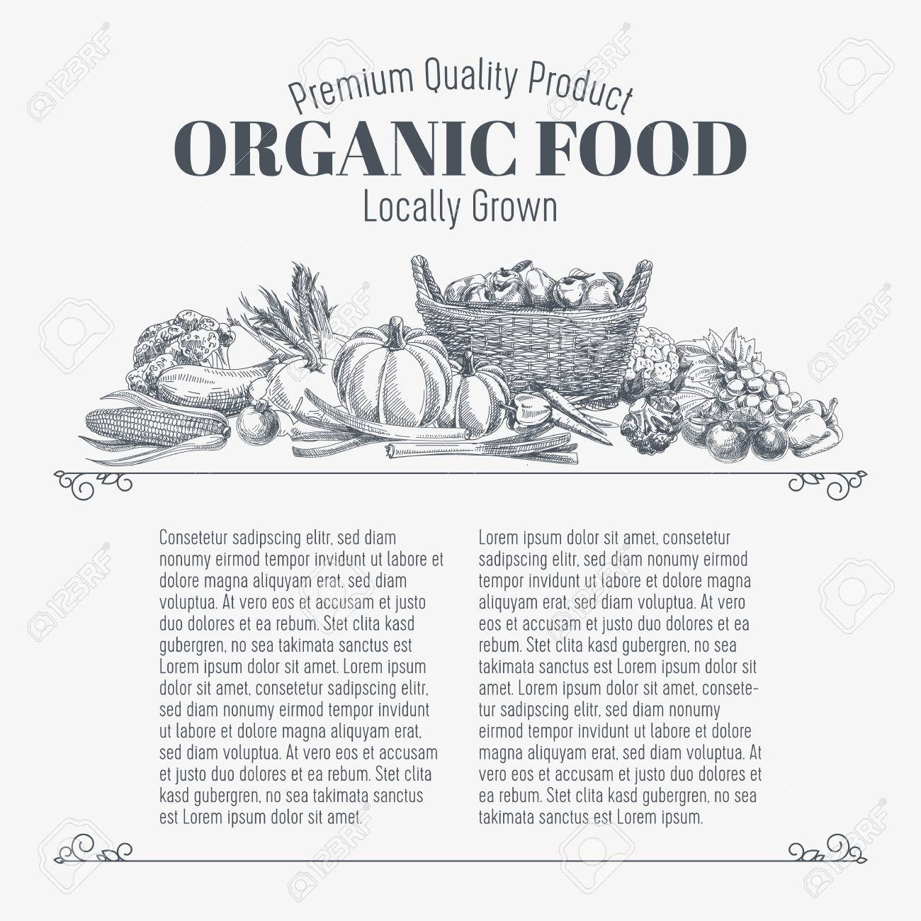 Vector background with hand drawn organic food. Vegetable and fruits spices illustration. - 49425286
