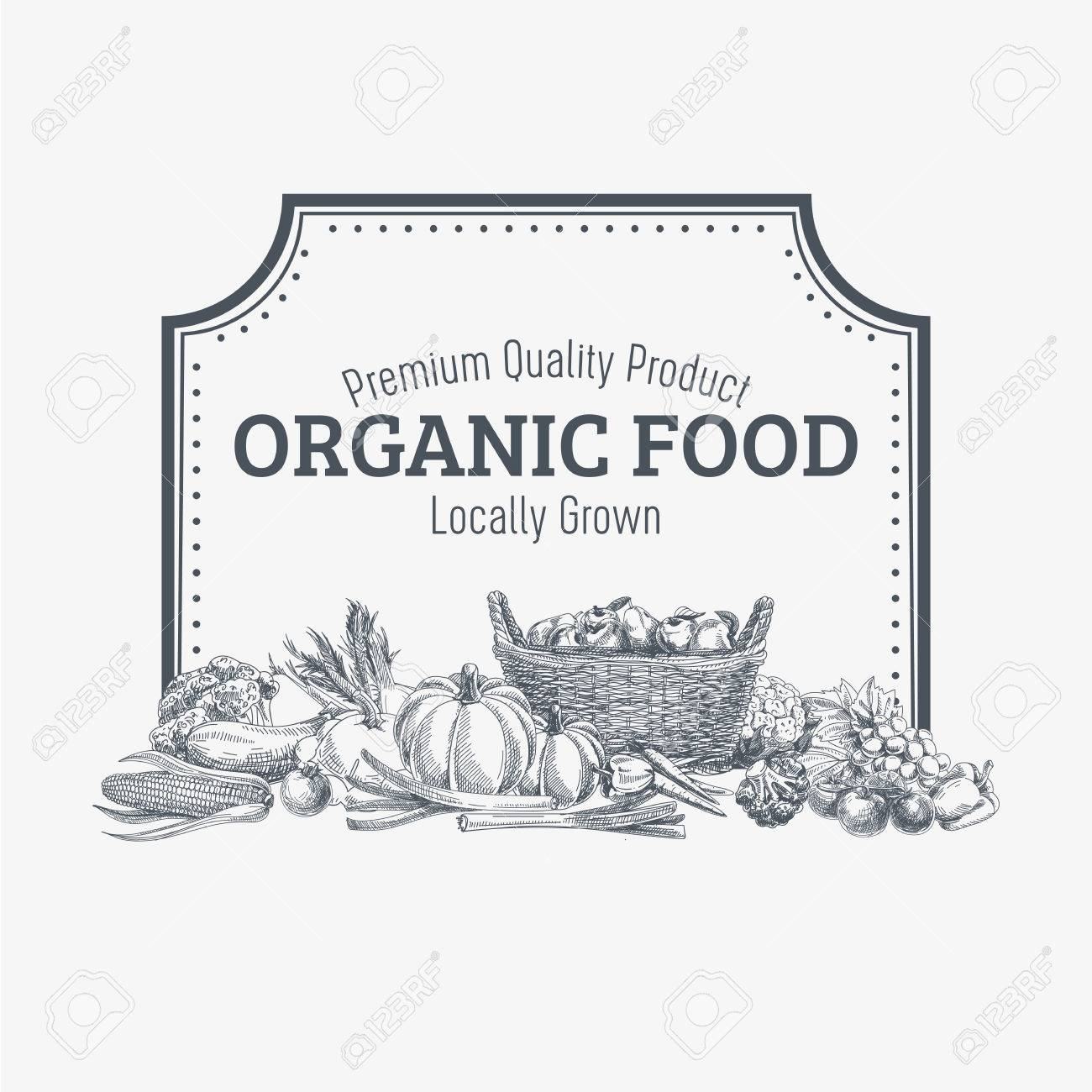Vector background with hand drawn organic food. Vegetable and fruits spices illustration. - 49425287