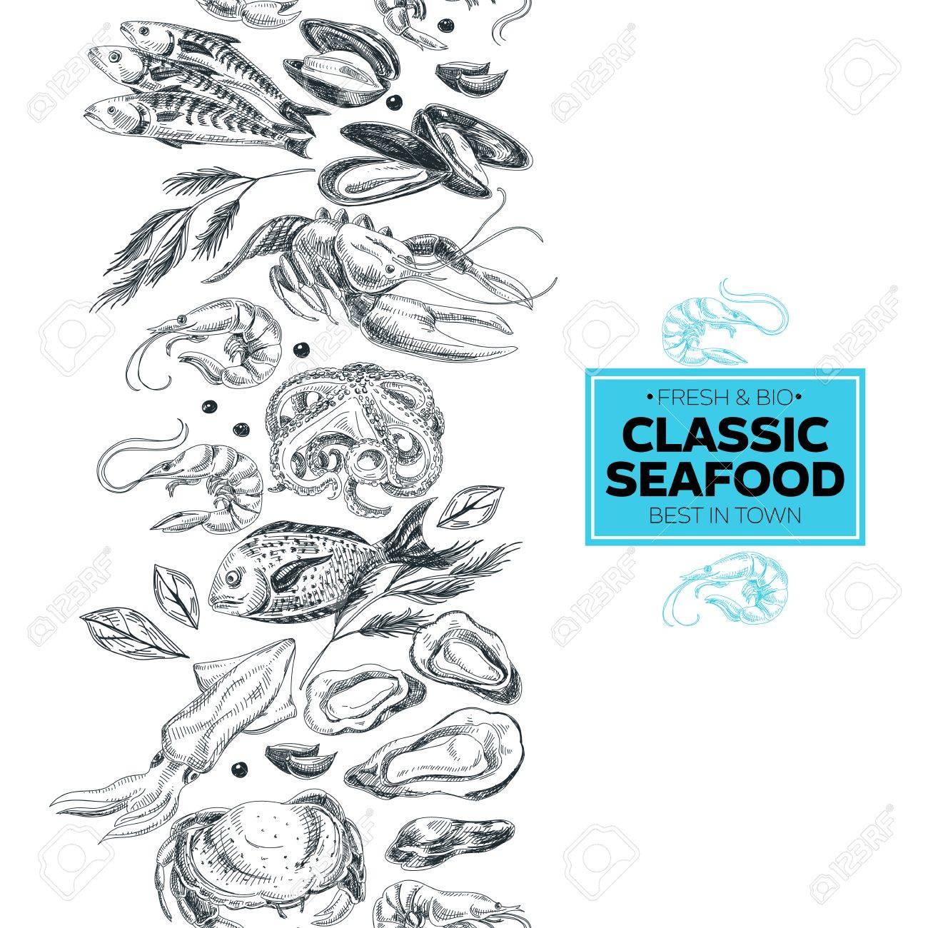 Vector - Vector hand drawn sea food Illustration. Vintage style. Retro food  background. Sketch
