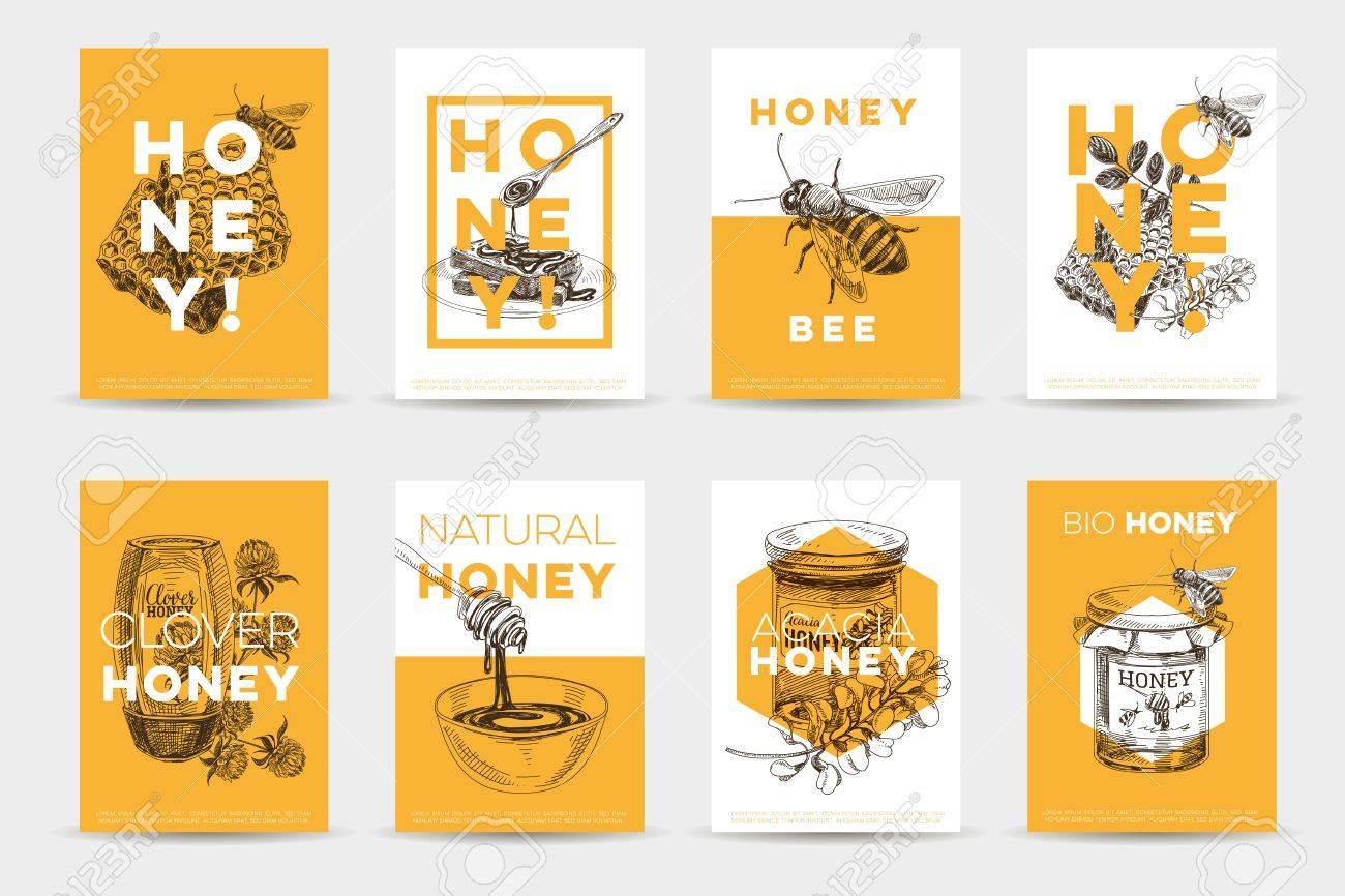 Vector hand drawn honey poster set. Sketch vintage style Illustrations. Cards design template. Retro background. - 75684156