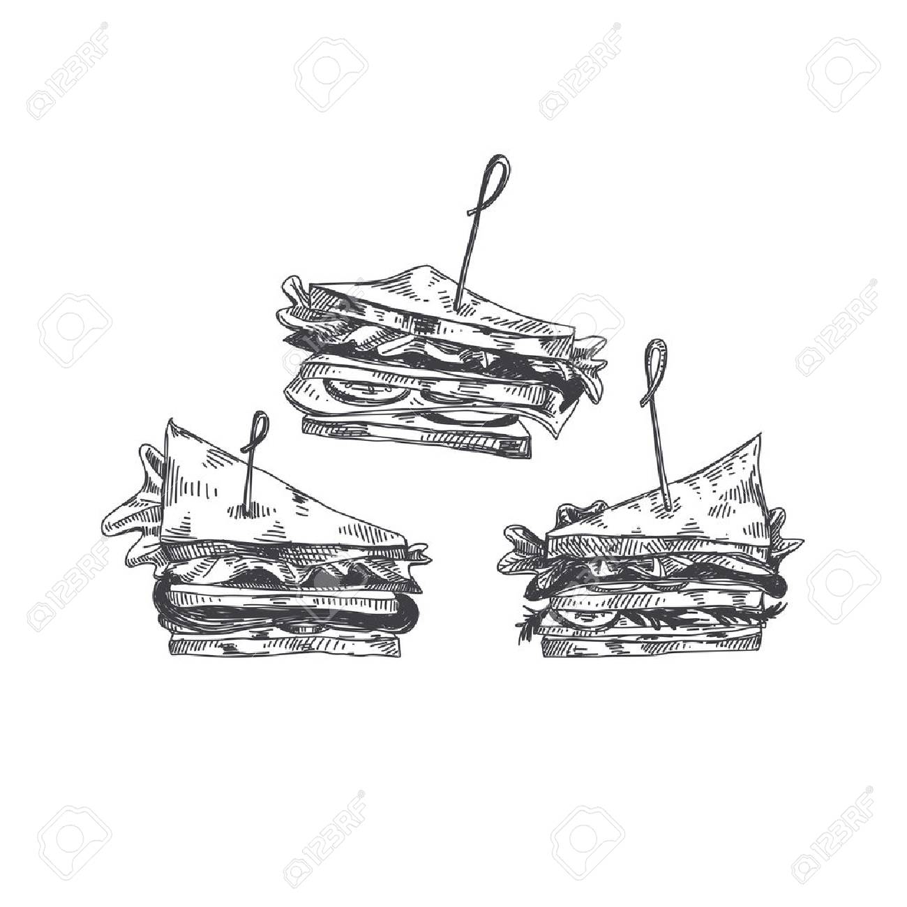 Beautiful vector hand drawn finger food Illustration. Sandwich in Detailed vintage style images. - 93484508