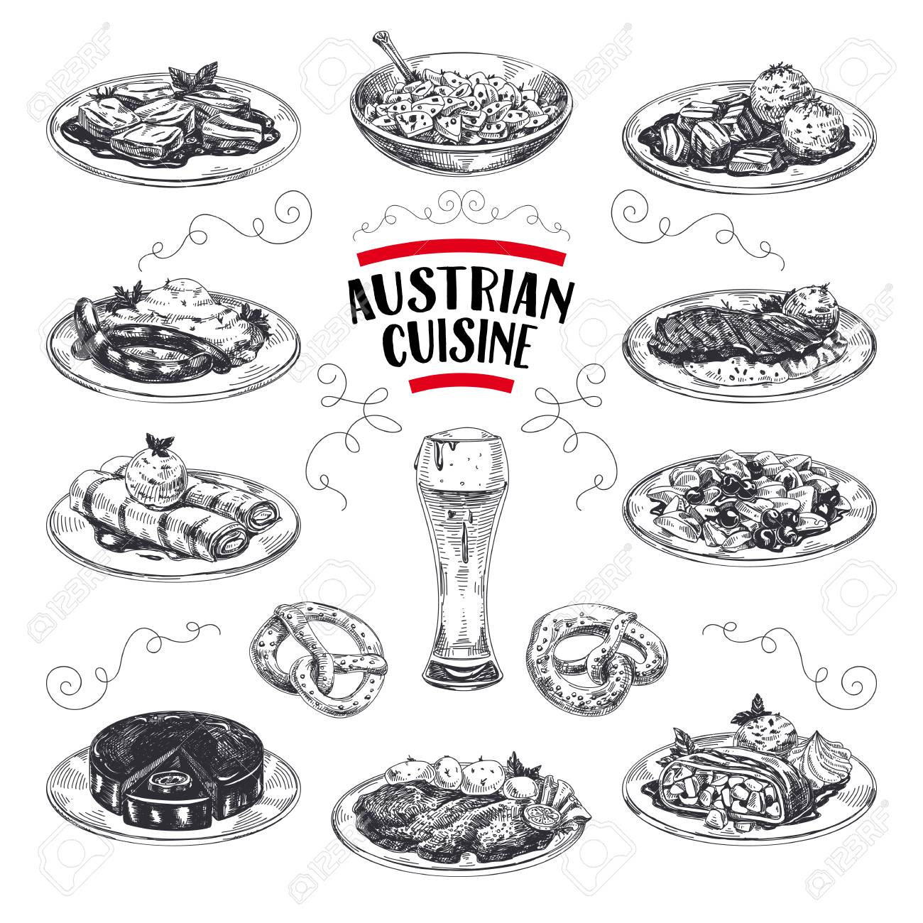 Beautiful vector hand drawn austrian cuisine Illustrations set. Detailed retro style images. Vintage sketch elements for labels, packaging and cards design. Modern background. - 104284334