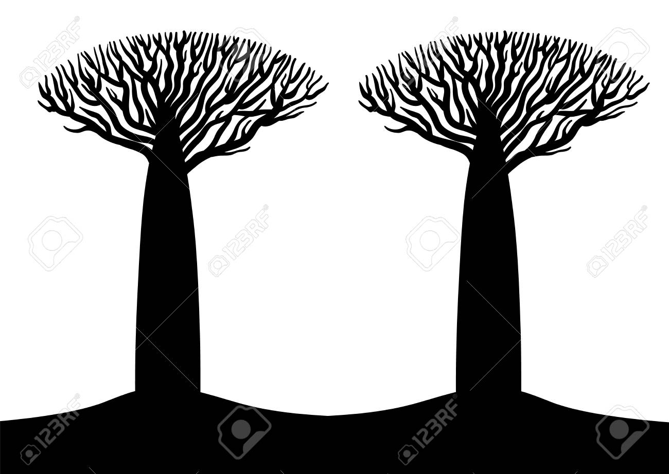 Two Black And White Baobab Stylized Trees Silhouettes Flyer Template