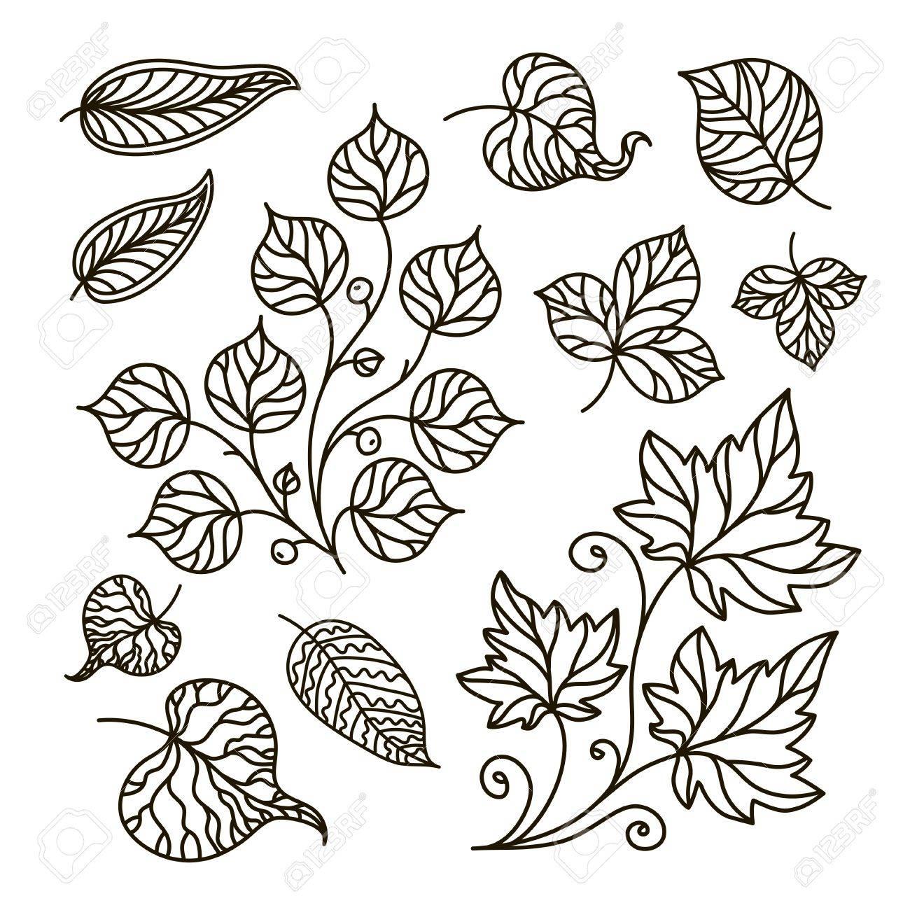Coloriage Arbre Dete.Illustration De Contour Livre De Coloriage Branche Ensemble