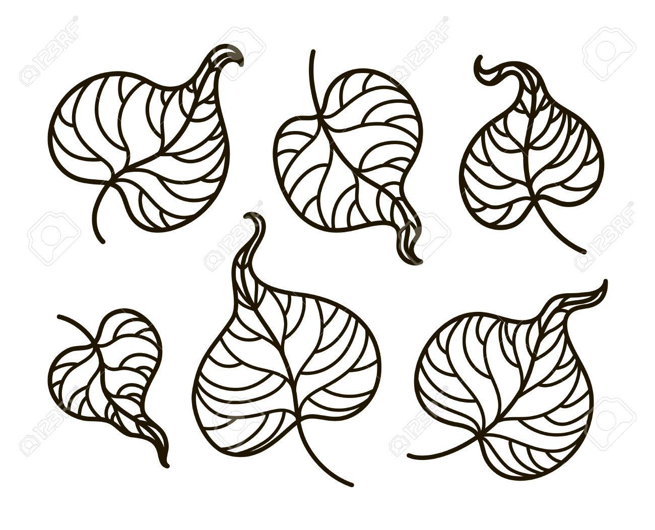 Vector, Contour Illustration, Coloring Book, Set, Leaves, Summer ...