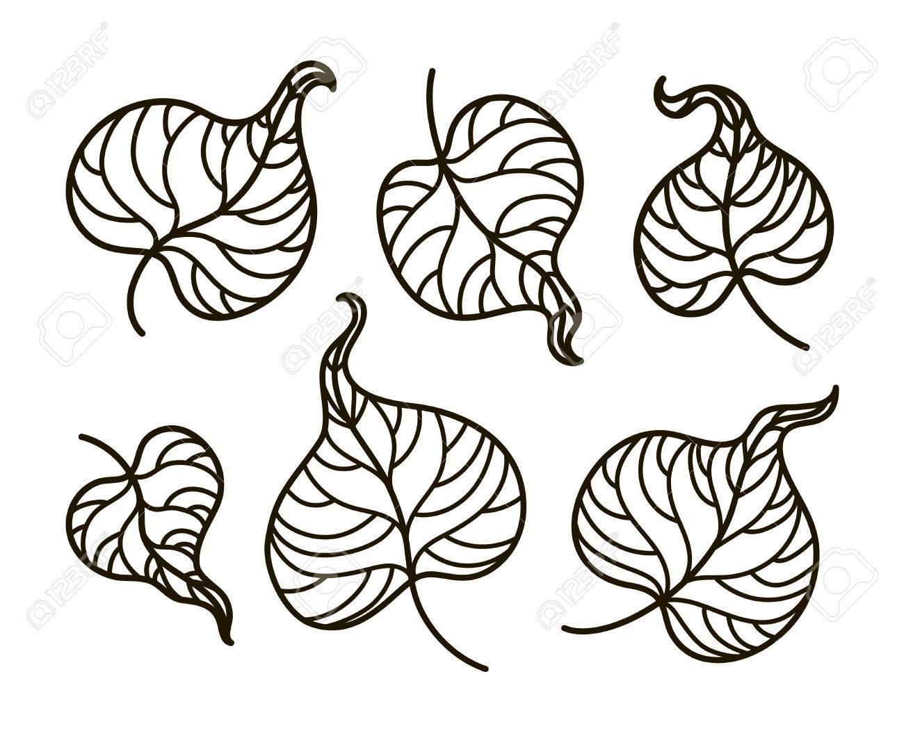Vector Ilustración De Contorno Libro Para Colorear Conjunto Hojas Verano Bosque Naturaleza árbol Planta Ilustración En Blanco Y Negro