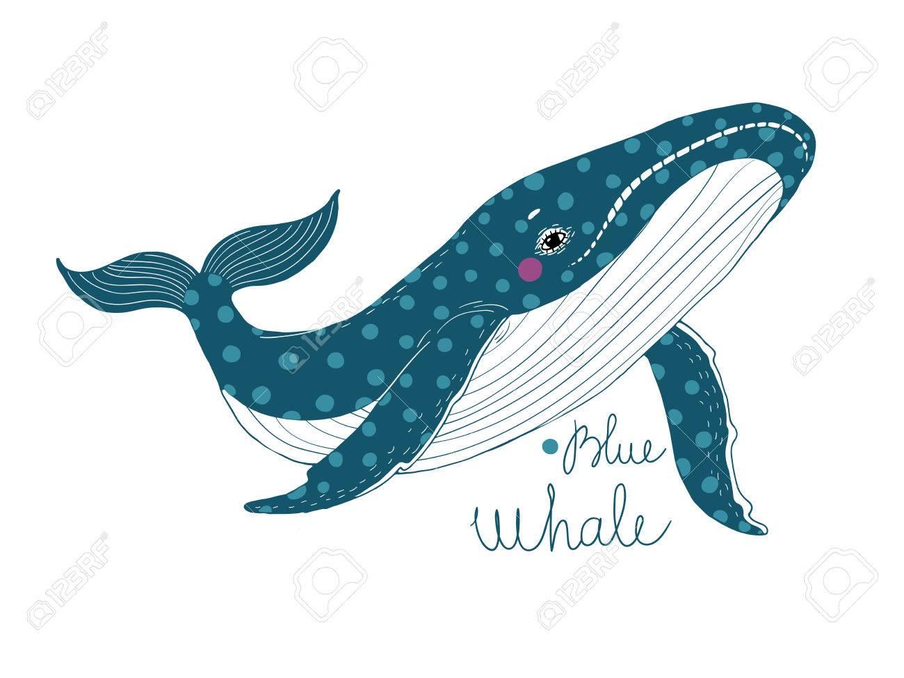 Coloriage Queue De Baleine.Big Belle Baleine Animaux Dans La Mer Et L Ocean Dessin A La Main