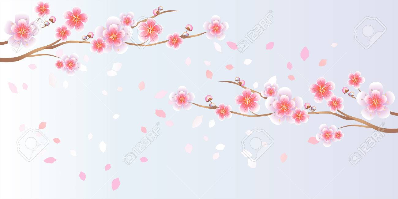 Branches Of Sakura With Pink Flowers Isolated On Light Blue