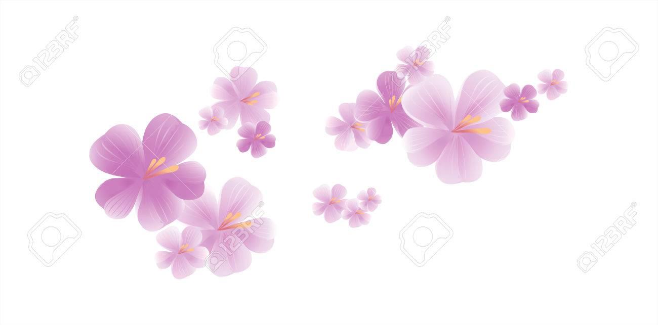 Volar Las Flores Púrpuras Claras Aisladas En El Fondo Blanco Flores