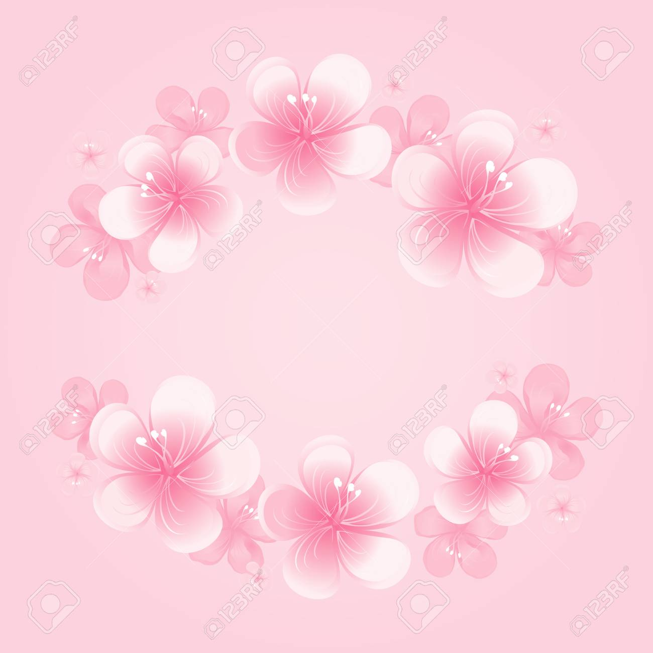 Pictures Of Light Pink Flowers Ibhalo Parkersydnorhistoric Org