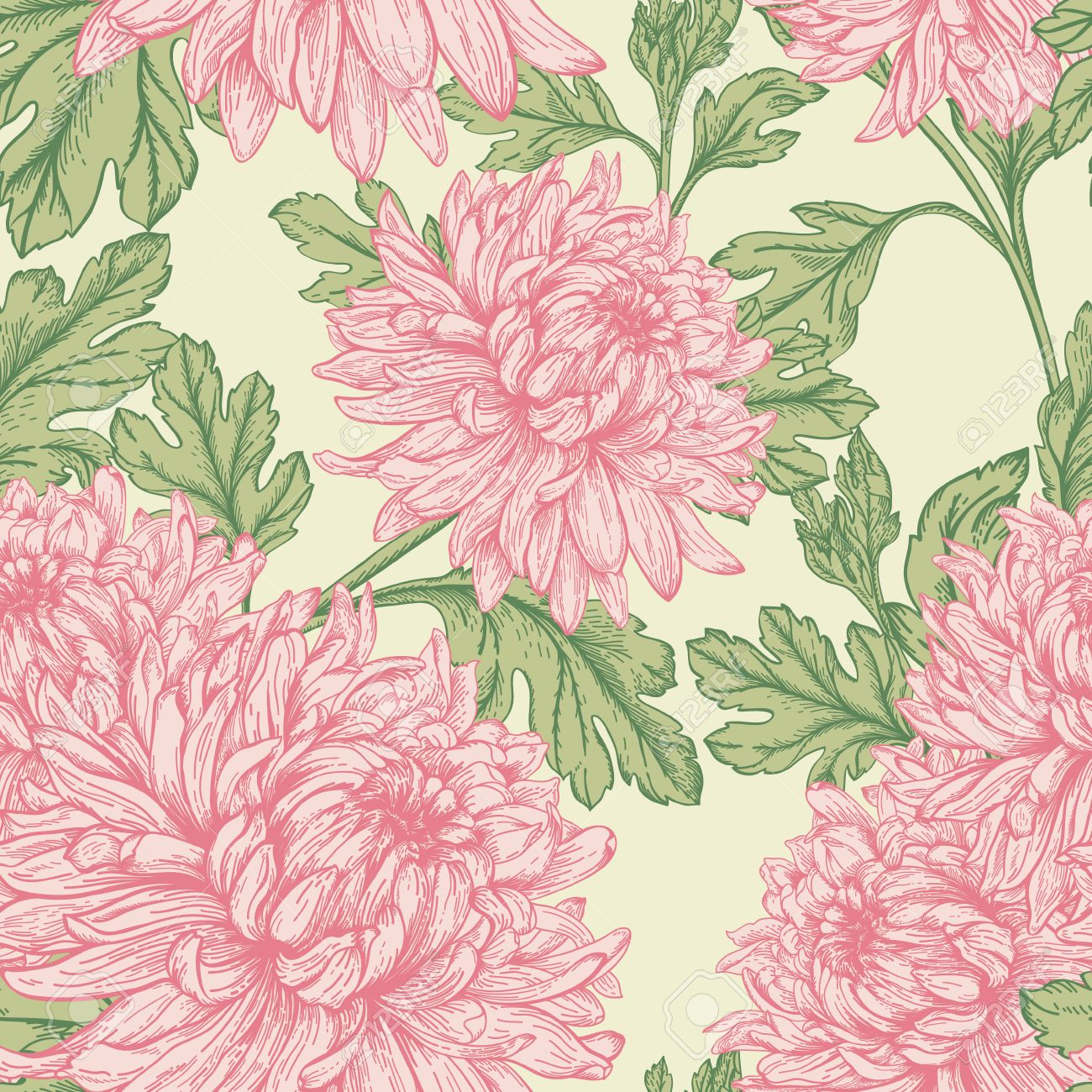 Pink floral seamless vector background floral hrysanthemum seamless - Vintage Seamless Floral Pattern With Flowers Chrysanthemum Vector Illustration Stock Vector 39922963