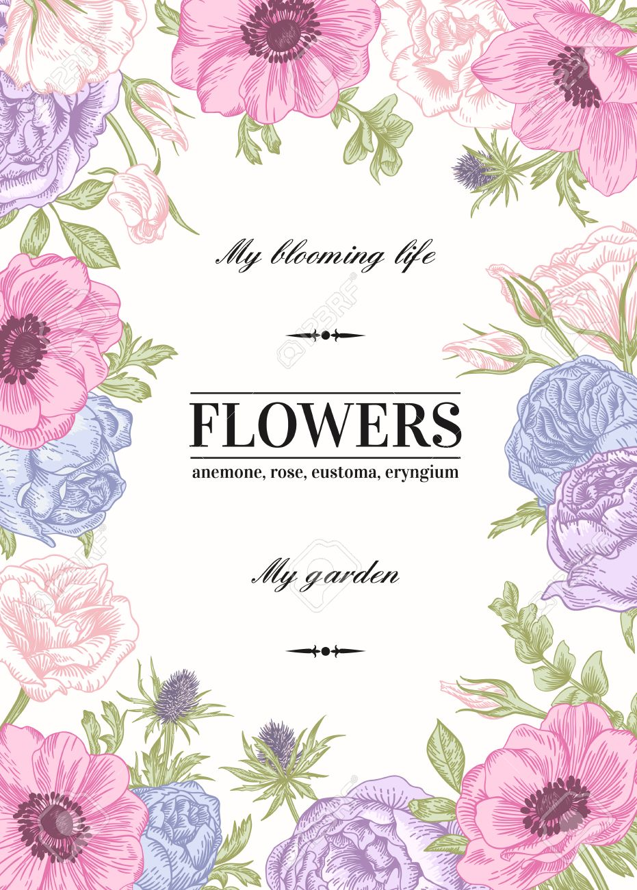 Fabulous Floral Vector Background With Flowers In Pastel Colors. Anemone  PW24