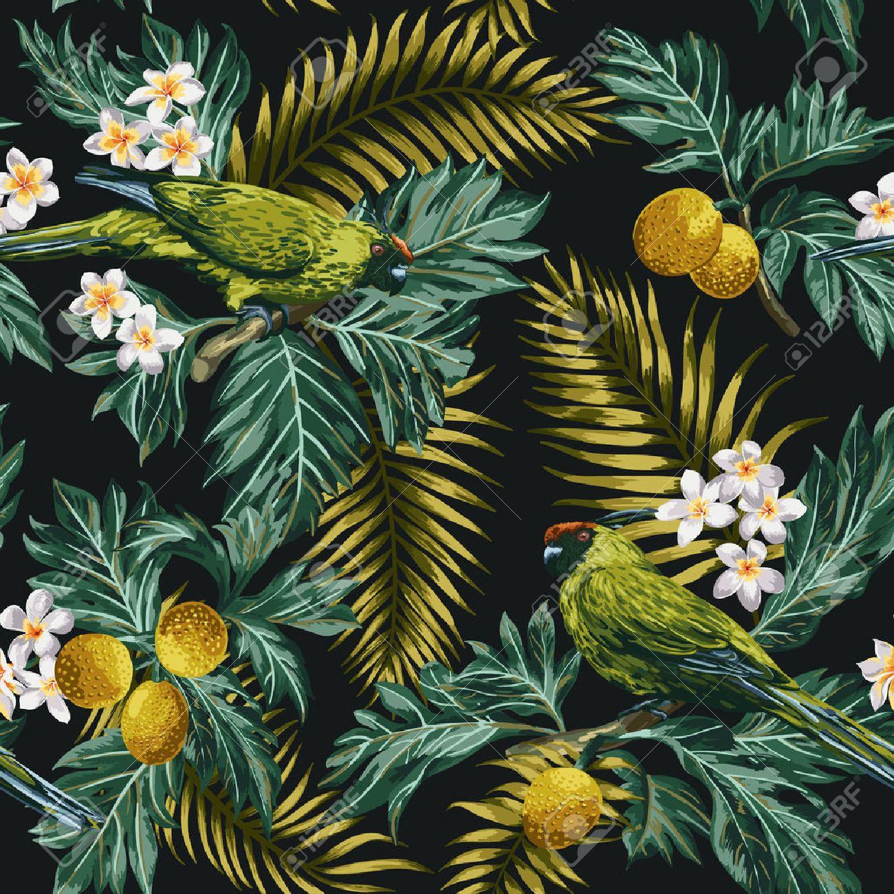 Seamless exotic tropical pattern with leaves, fruits, flowers and birds. Breadfruit, palm, plumeria, parrots. Vector illustration. - 56799897