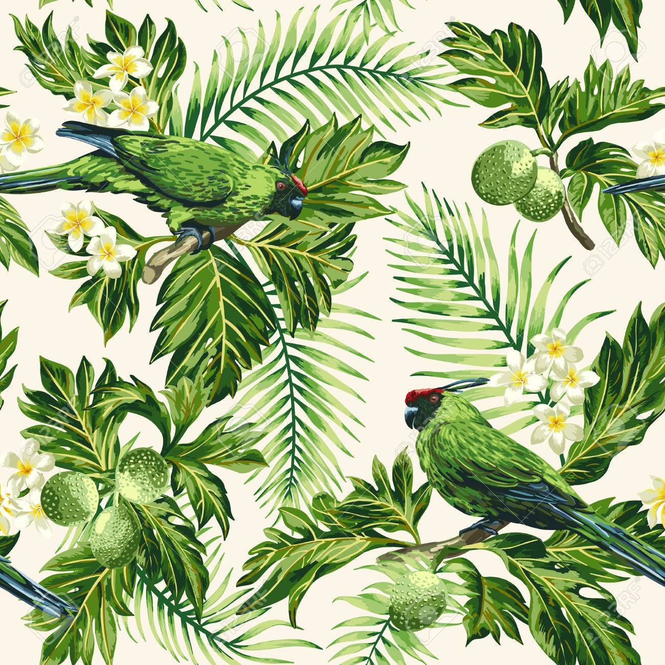 Seamless exotic tropical pattern with leaves, fruits, flowers and birds. Breadfruit, palm, plumeria, parrots. Vector illustration. - 56800085