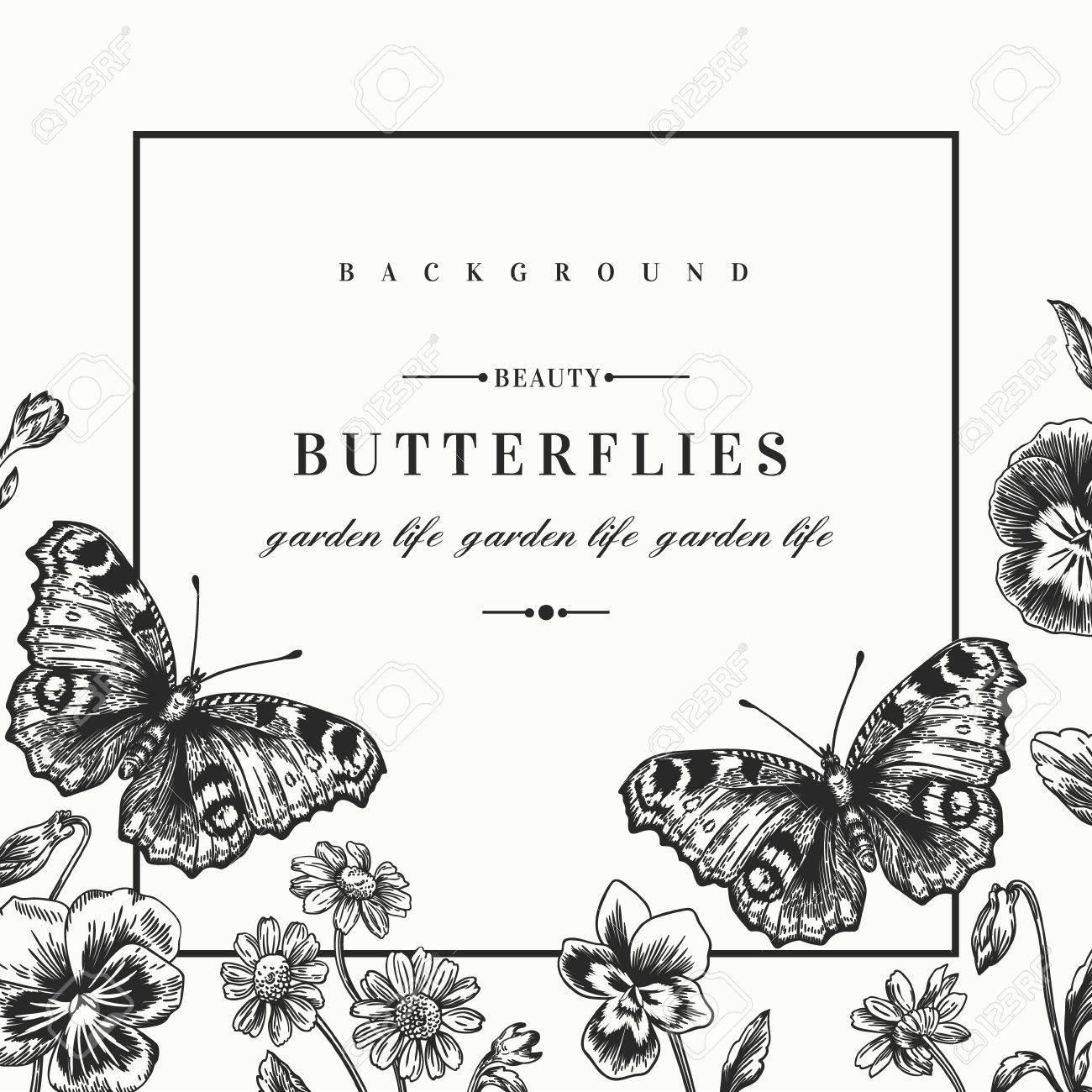 Schön Schmetterling Rahmen Bilder - Rahmen Ideen - markjohnsonshow.info