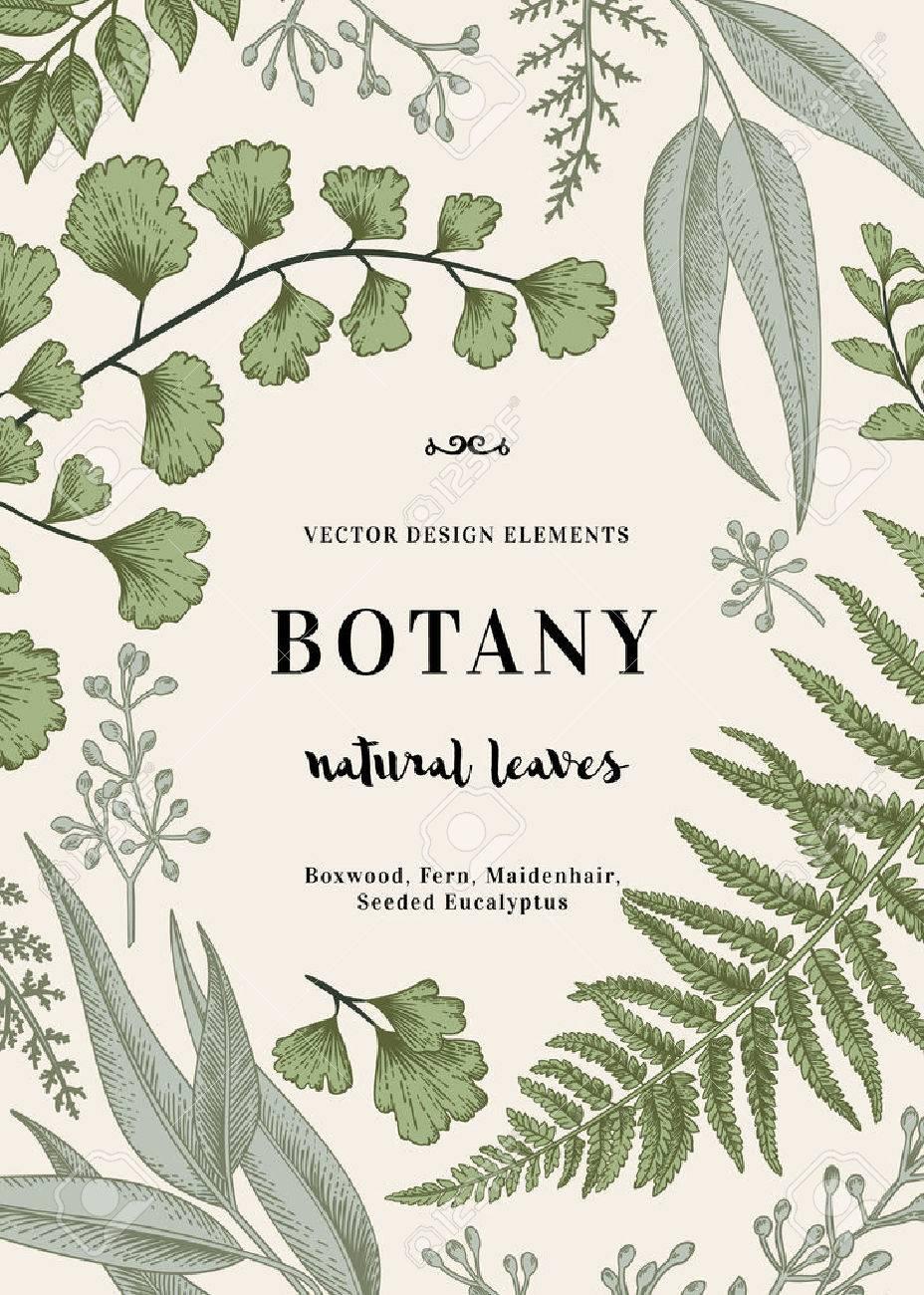 floral background vintage invitation with various leaves botanical