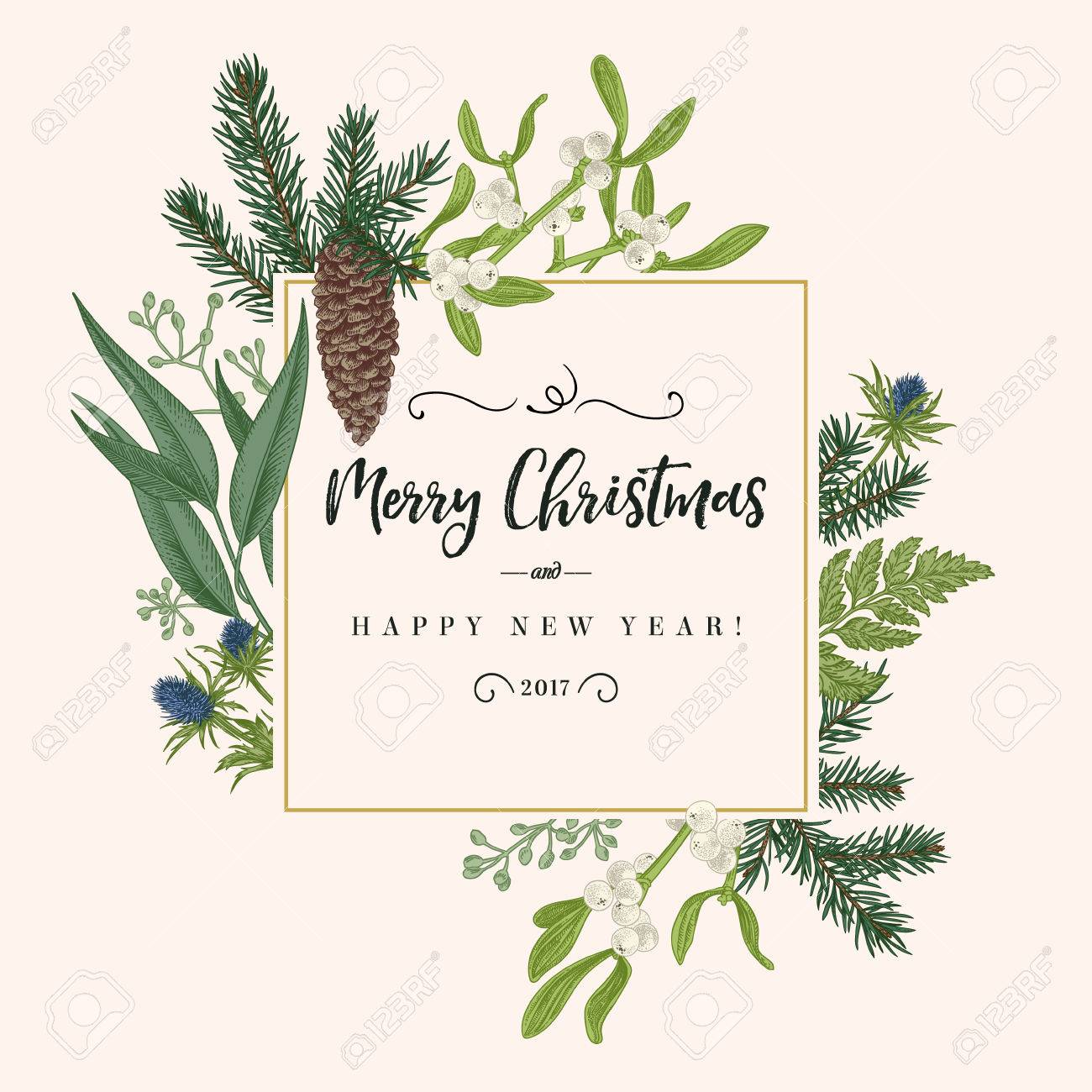 Christmas holiday frame in vintage style. Greeting invitation card. Botanical illustration with pine branches, pine cones, mistletoe, fern. - 69224572