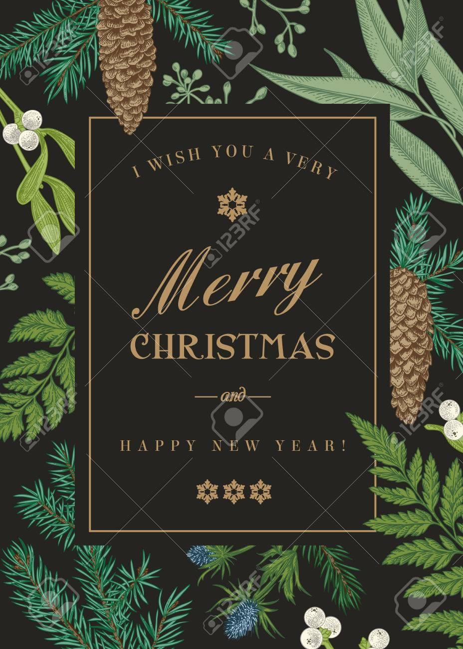 Weihnachtsgrußkarte Im Vintage-Stil. Vector Rahmen Mit Farnen ...