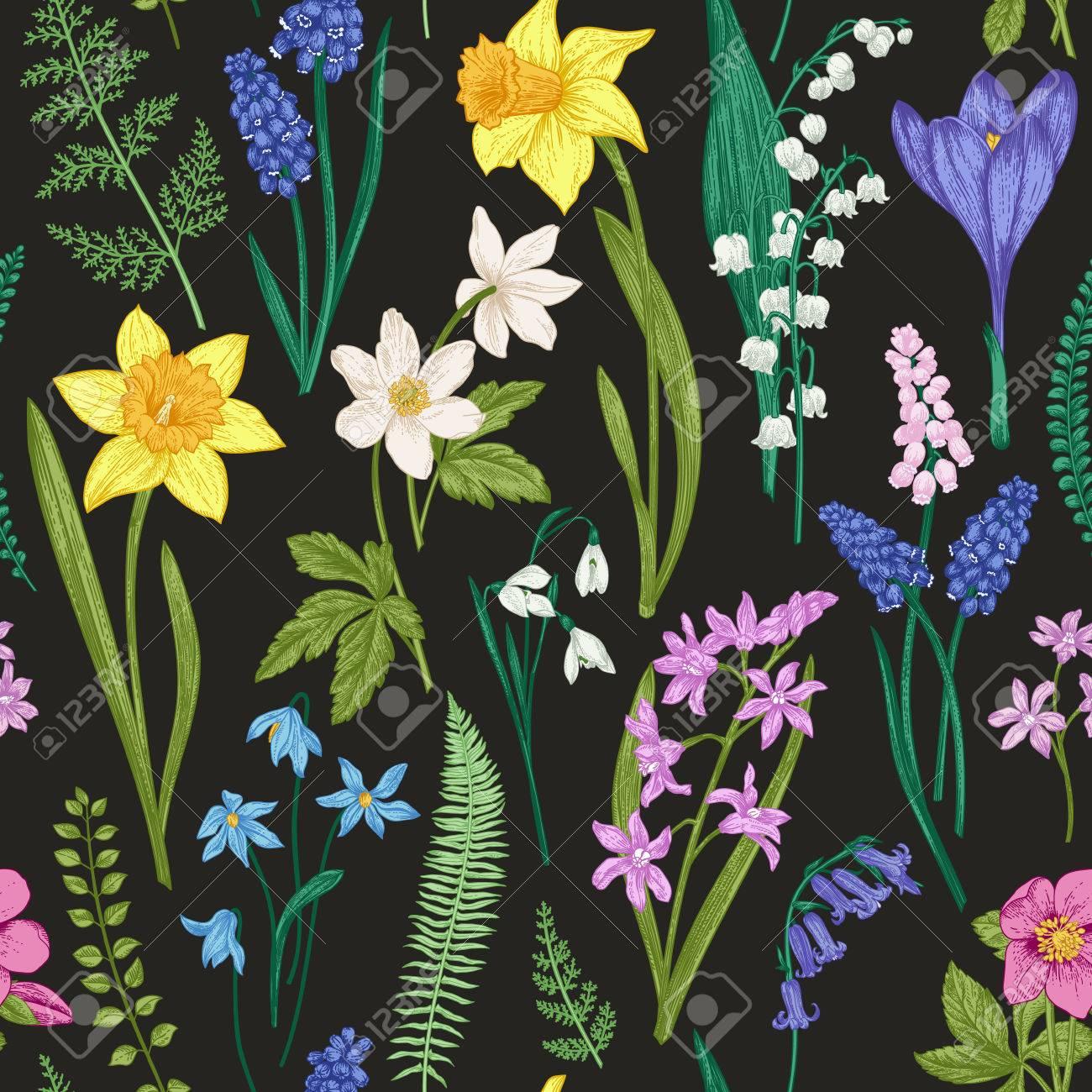 Vintage Patron Floral Transparente Sobre Un Fondo Negro Flores De