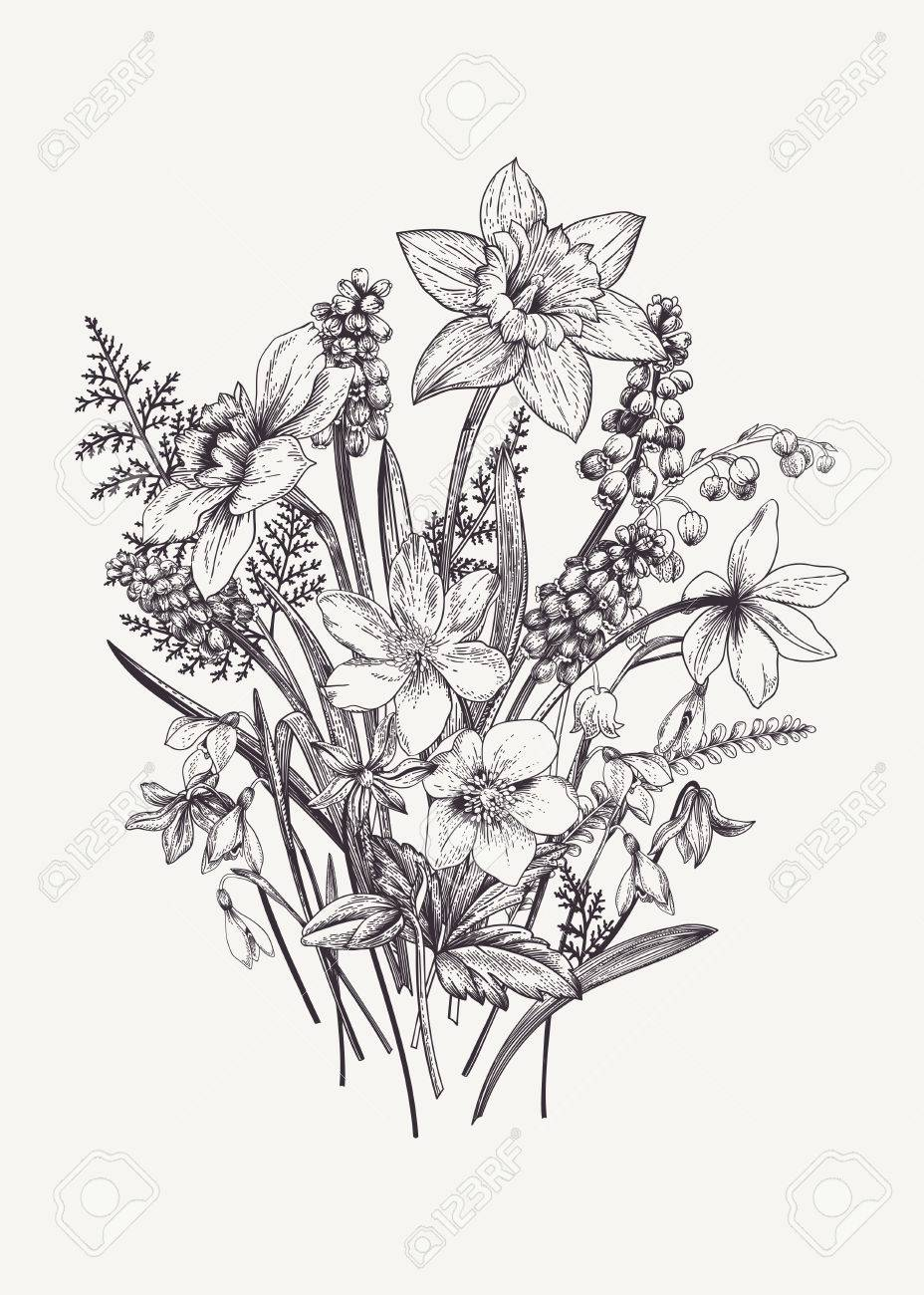Bunch Of Early Spring Flowers Botanical Illustration Engraving