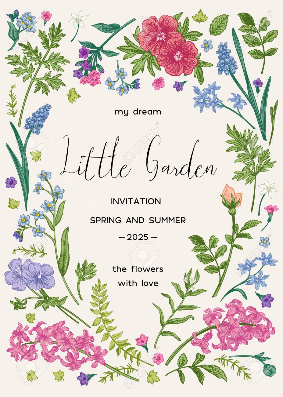 Floral frame with spring and summer garden plants. Little garden. Vector botanical illustration. Vintage style. Invitation card with flowers. Muscari, ferns, wormwood, geranium, hyacinth, rose. - 149007830