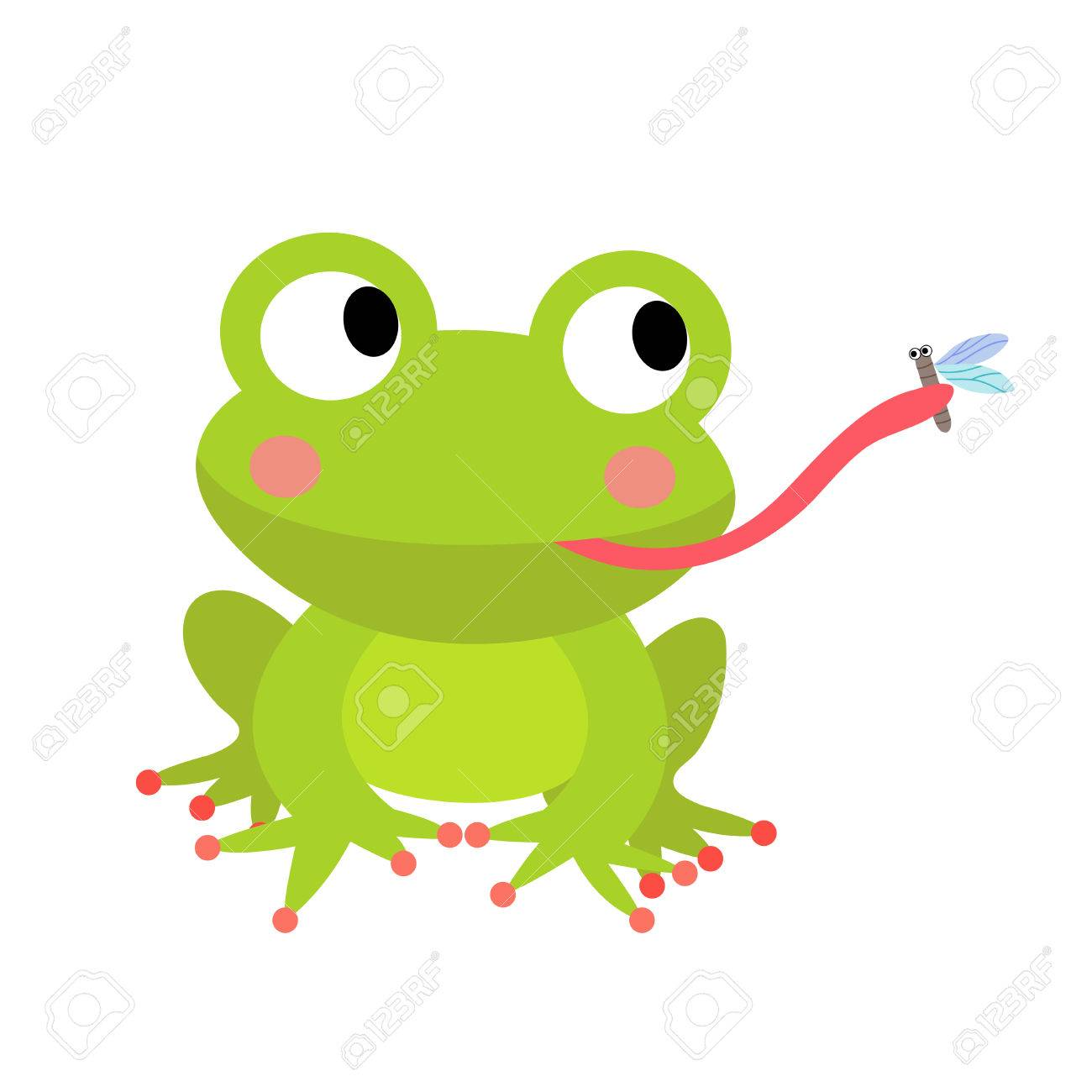 Frog eating fly animal cartoon character. Isolated on white background. Vector illustration. - 61302474