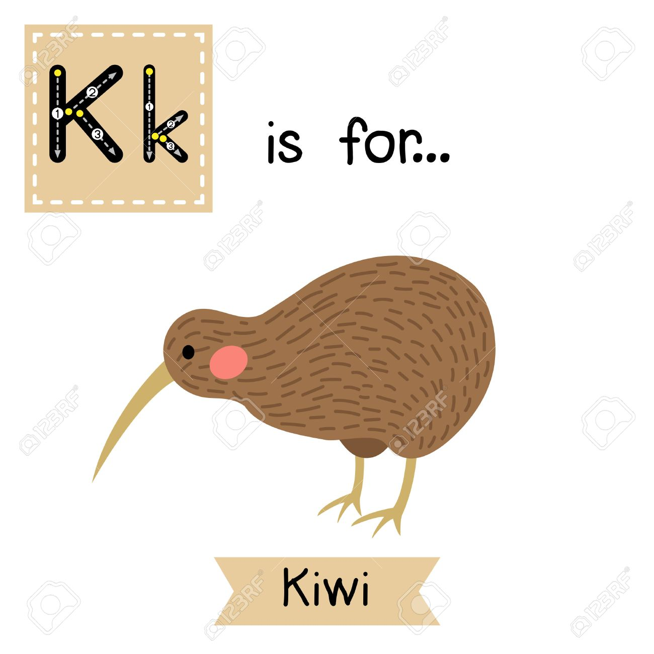 K Carta De Rastreo. Pájaro Del Kiwi. Tarjeta De Destello Del ...