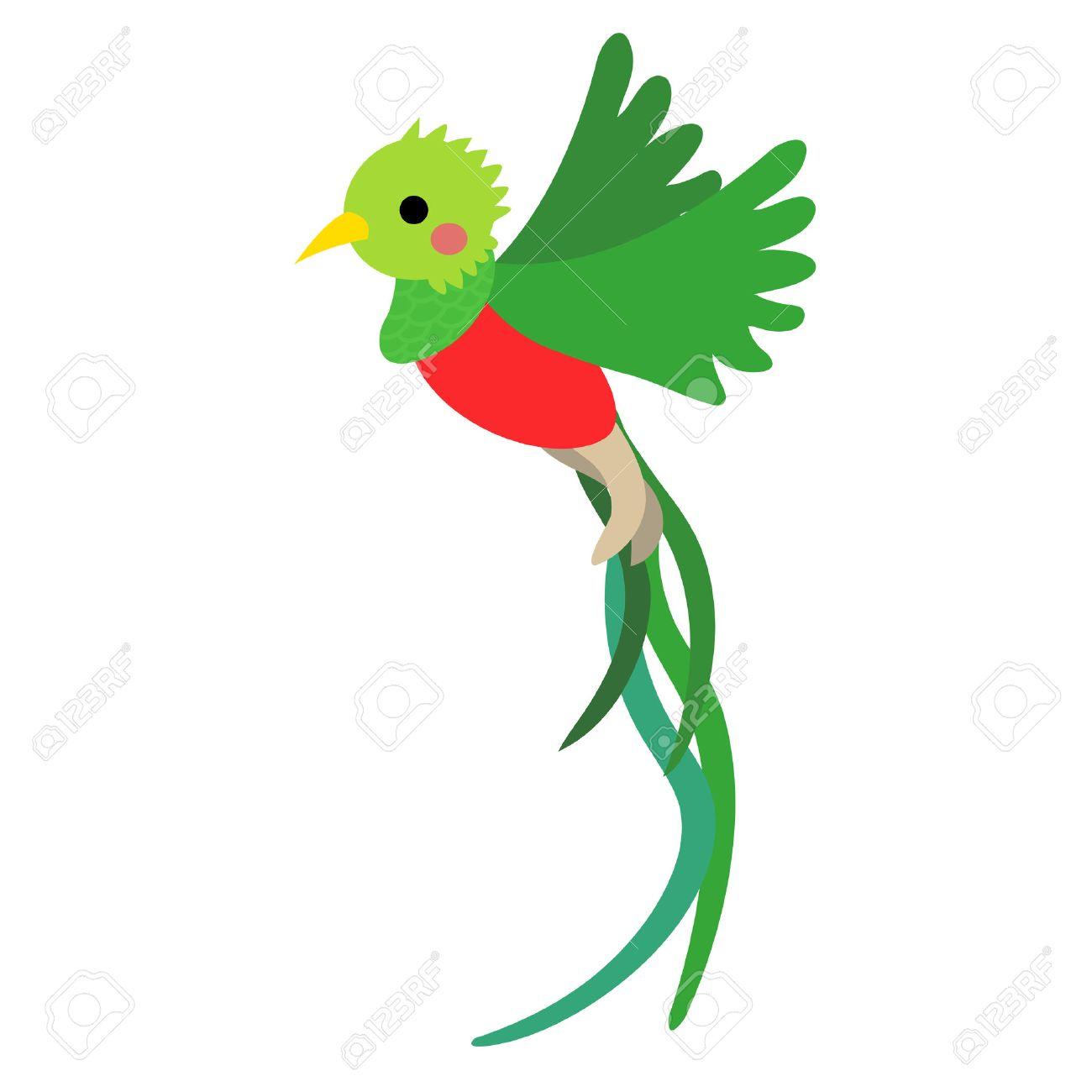 飛行ケツァール鳥動物漫画のキャラクター。白い背景上に分離。イラスト。