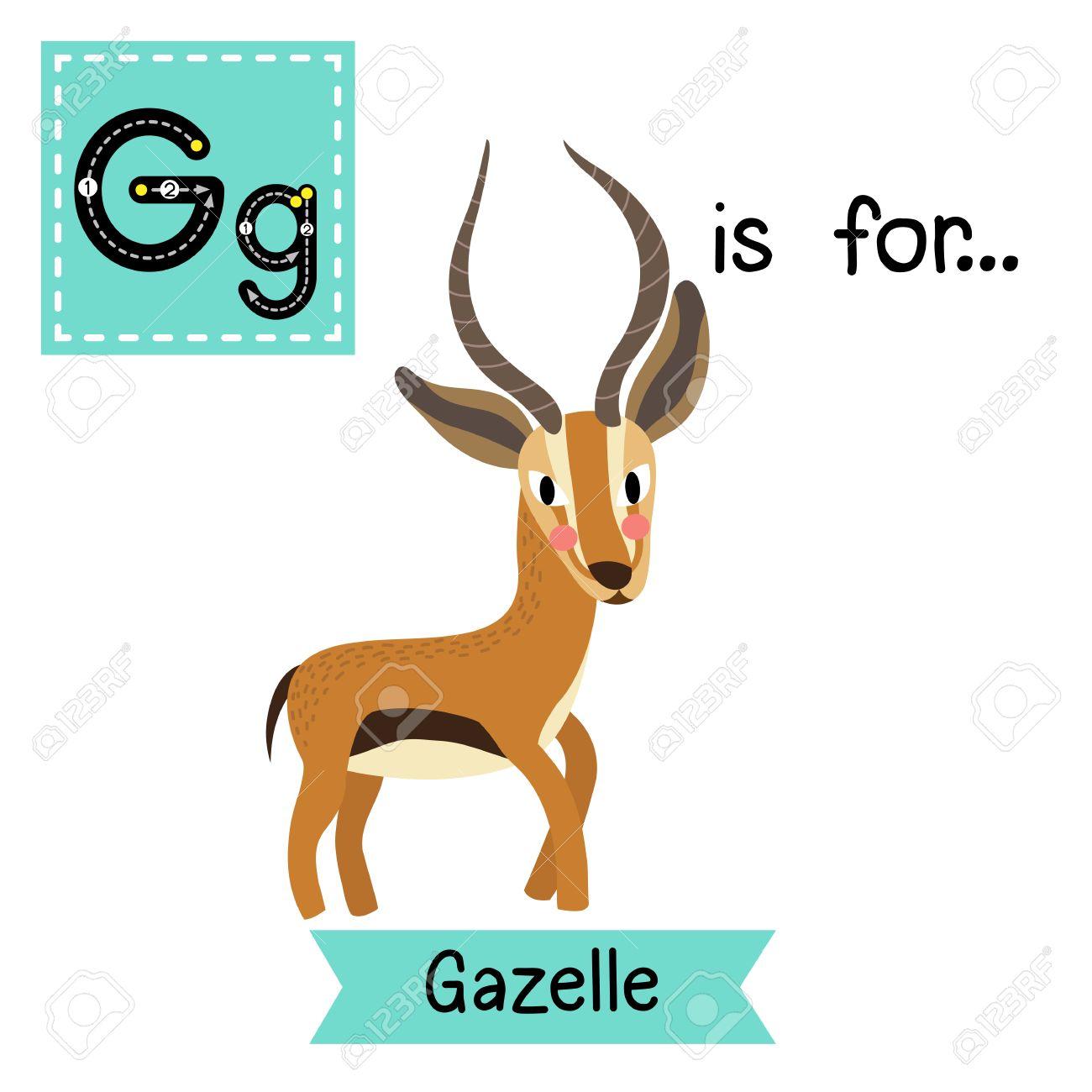 g letter tracing standing gazelle cute children zoo alphabet
