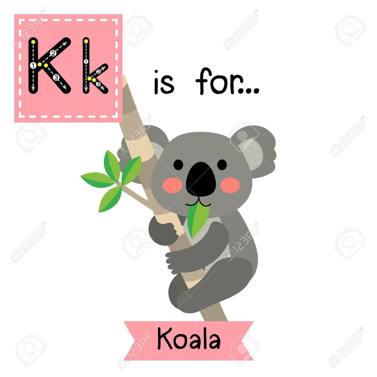 K Carta De Rastreo. Oso De Koala Que Suben El árbol. Tarjeta De ...