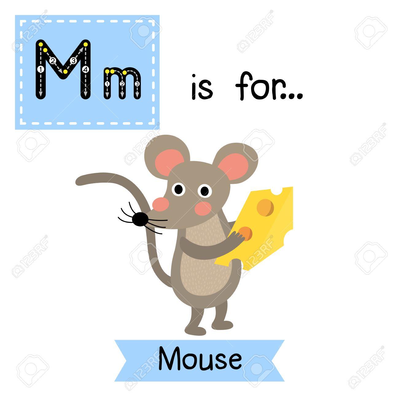 m 文字のトレース マウスは チーズを保持しています かわいい子供