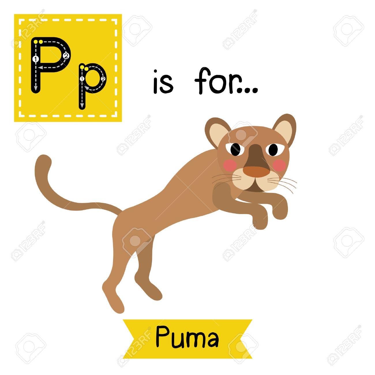 puma anglais