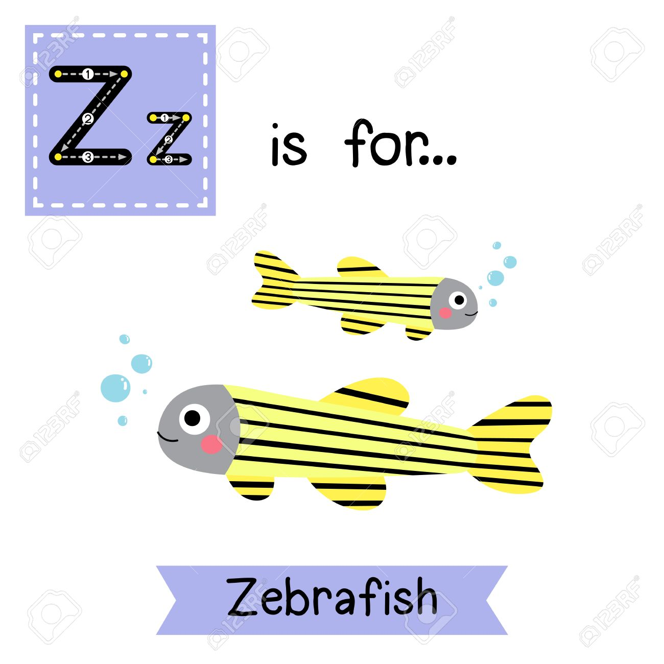 Z Brief Verfolgung Zebrabärbling Nette Kinder Zoo Alphabet Flash