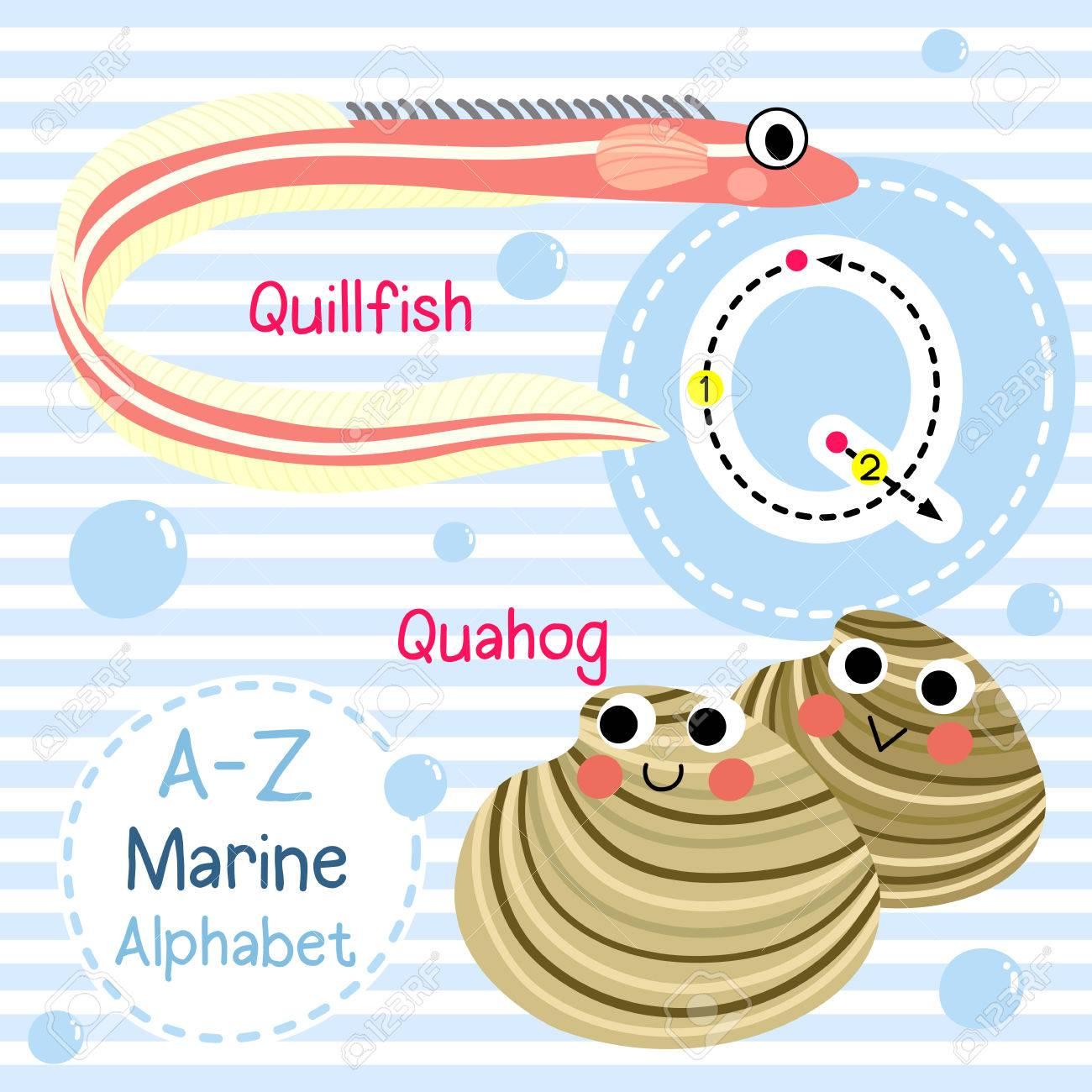 Q Letter Tracing Quahog Quillfish Cute Children Sea Marine