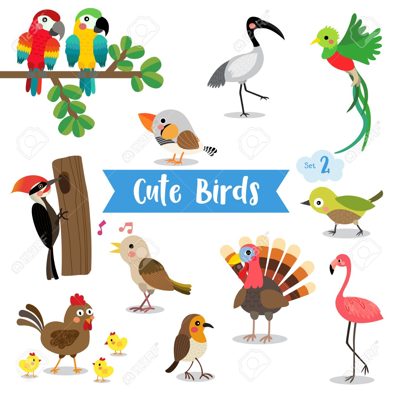 白い背景の上のかわいい鳥の動物漫画。鶏。ひよこ。フラミンゴ。オウム。トルコ。ナイチンゲール。キツツキです。キンカチョウ。ウグイス。ケツァール。イビス。ロビン。
