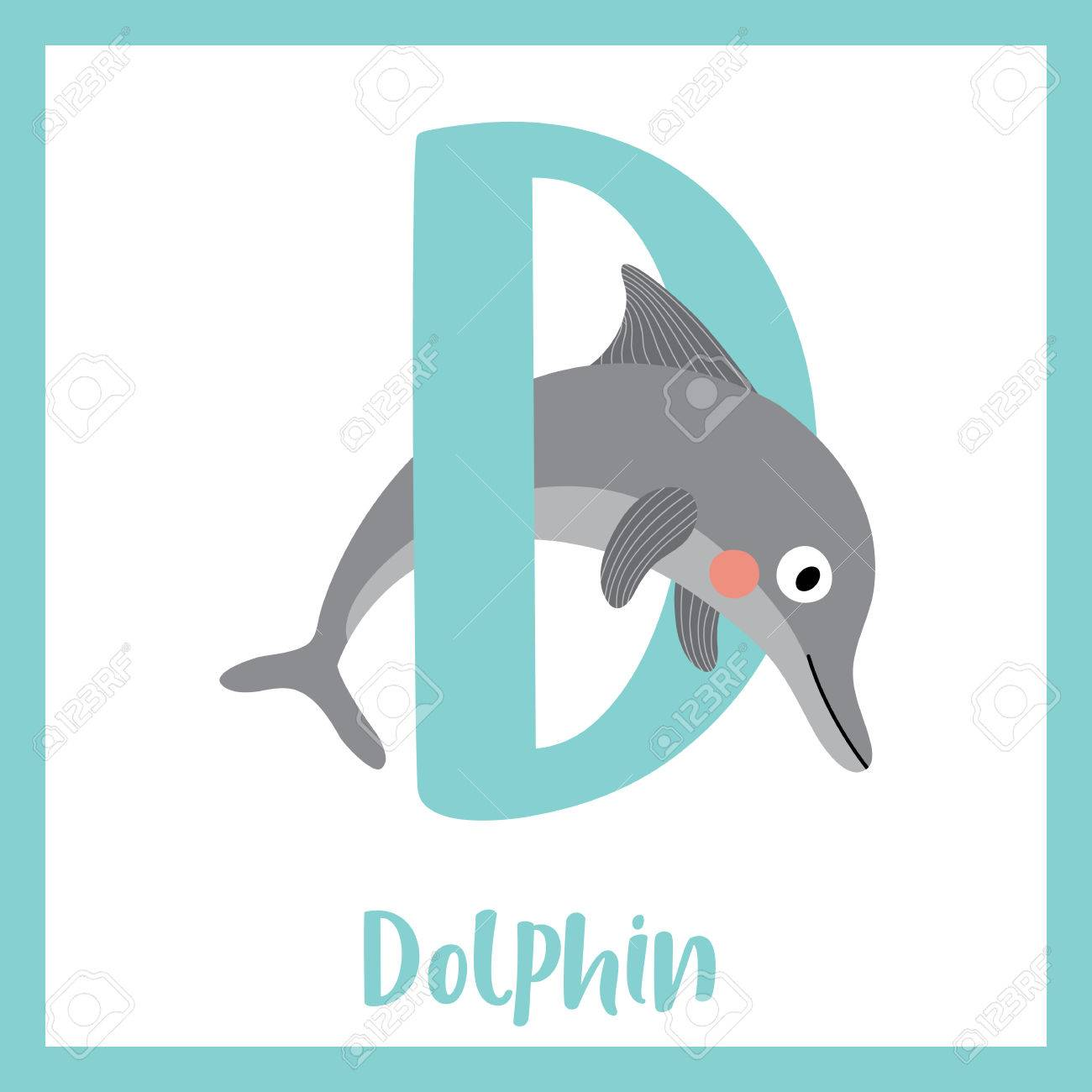 1fca2e5df D letter vocabulary. Dolphin. Cute children ABC zoo alphabet flash card. Funny  cartoon
