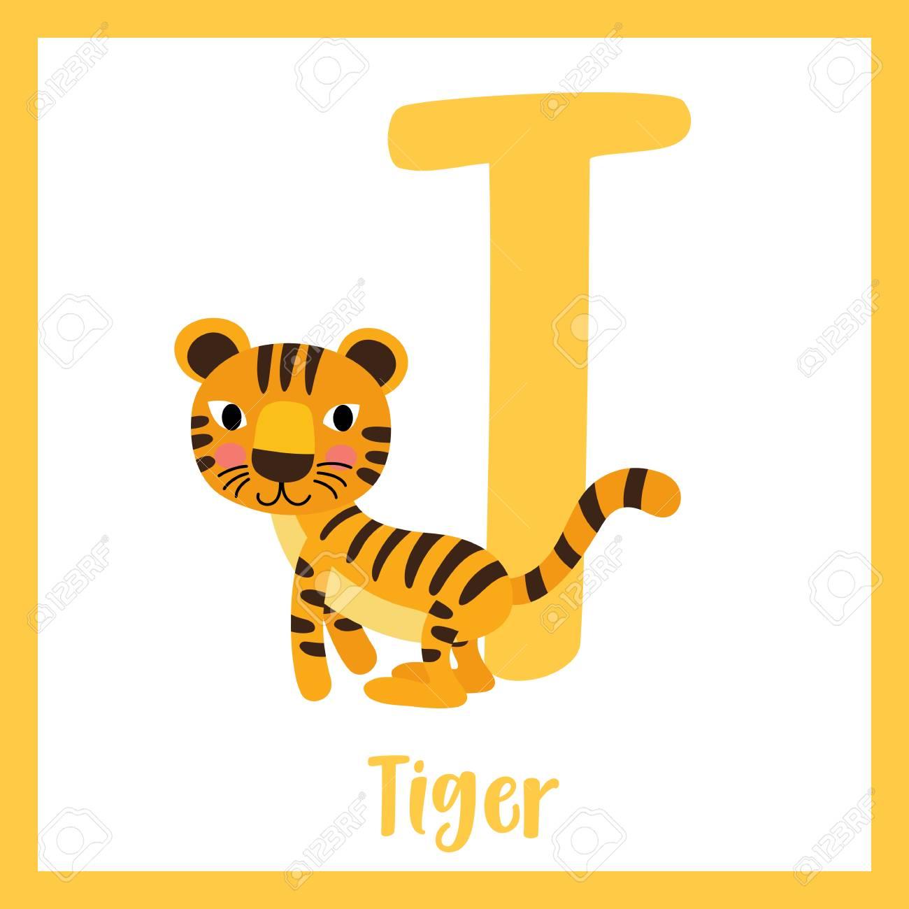 Vocabulario De Letra T Tigre Tarjeta Linda De Los Niños Del Alfabeto Del Alfabeto De Abc De Los Niños Animal De Divertidos Dibujos Animados Los
