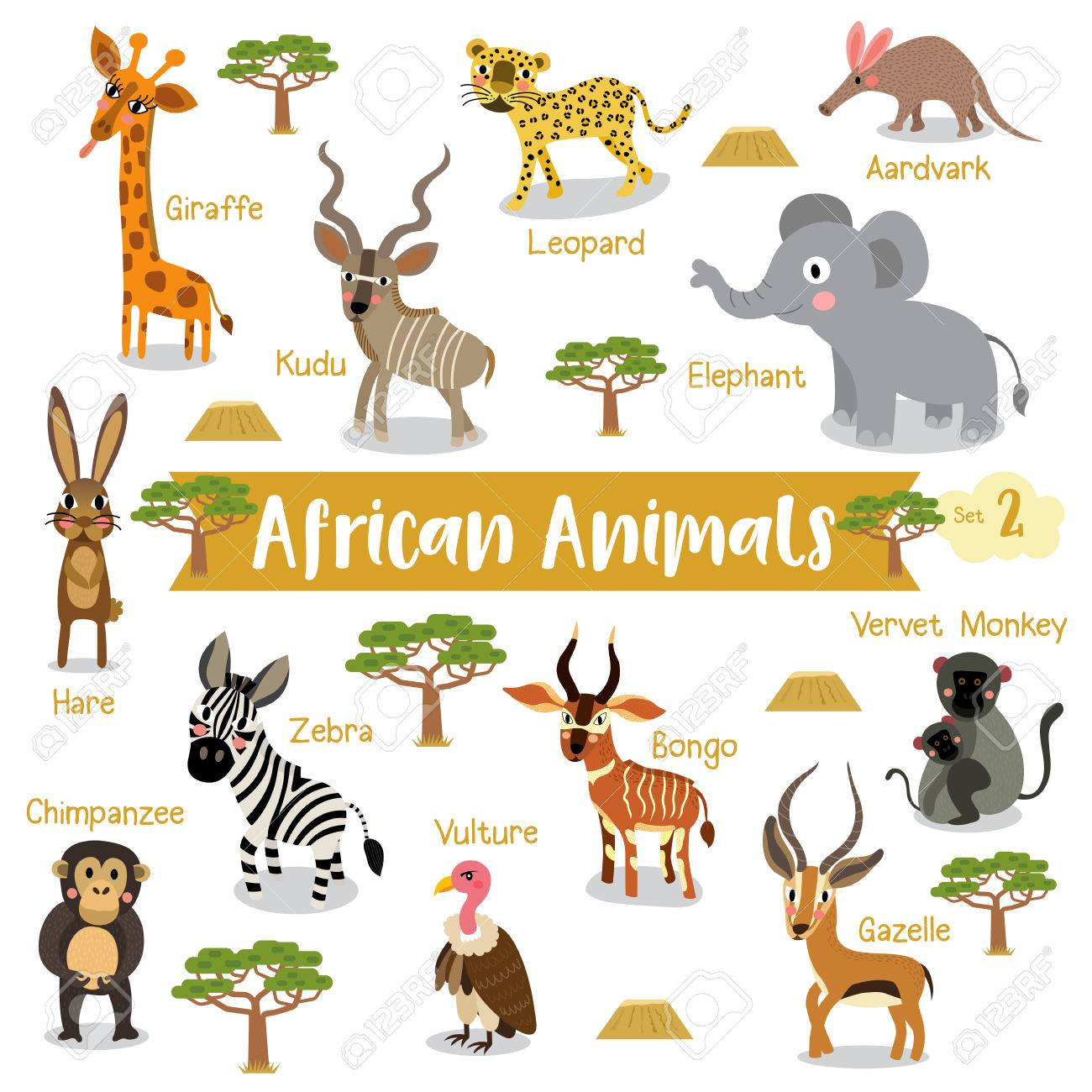 african animals cartoon on white background with animal name