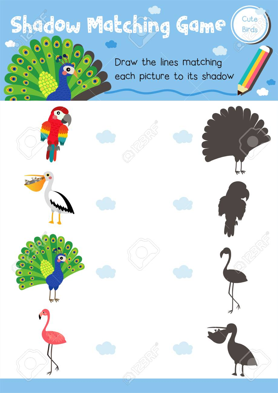 photo relating to Animal Matching Game Printable identify Shadow matching recreation of lovely fowl pets for preschool children..
