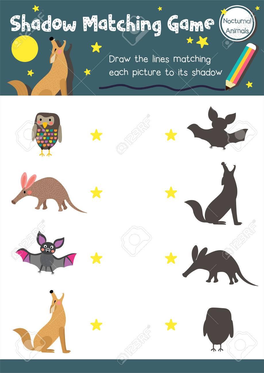 Schatten-Matching-Spiel Von Nächtlichen Tieren Für Vorschulkinder ...