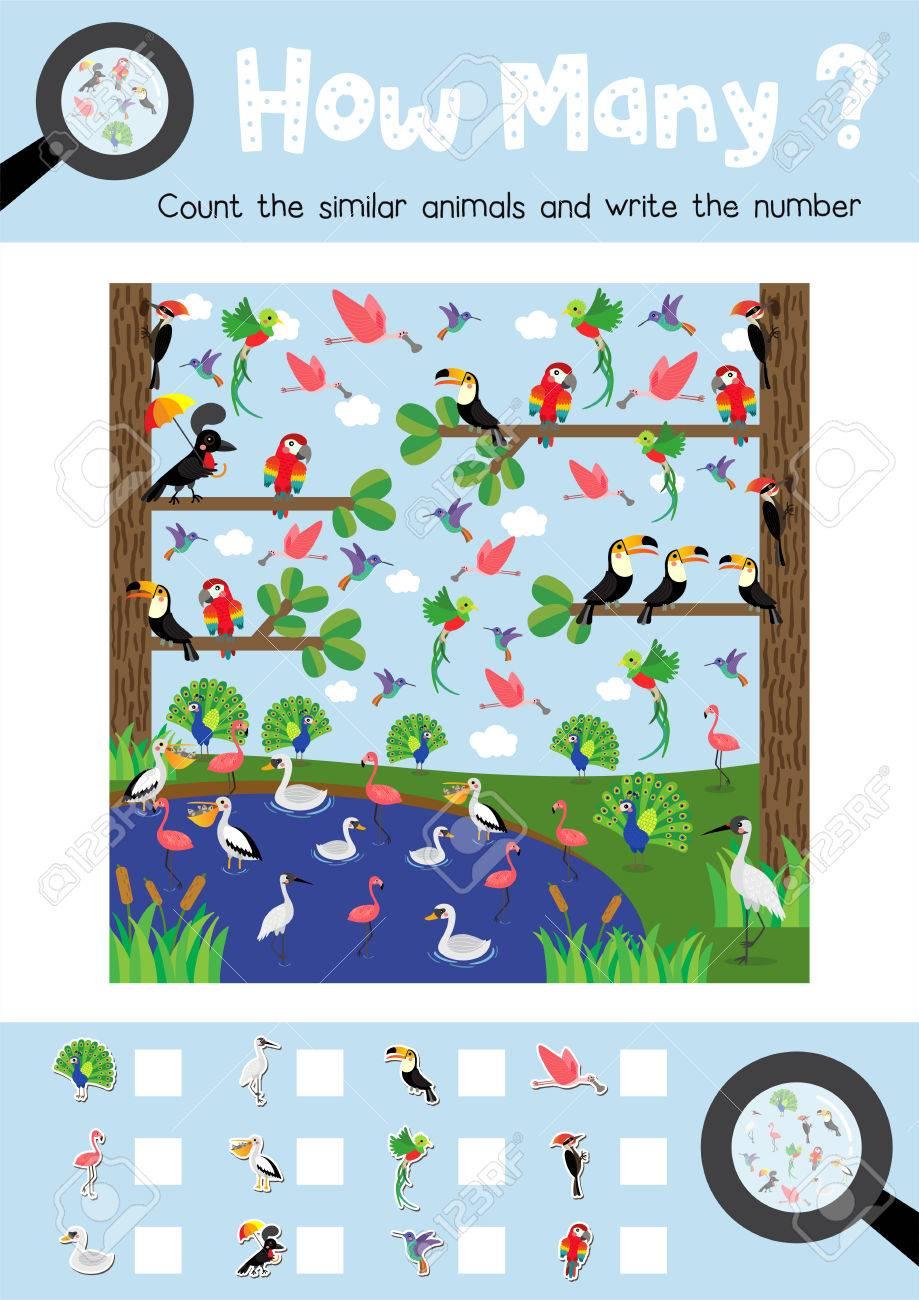 Zählen Spiel Von Niedlichen Vögeln Tiere Für Vorschulkinder ...
